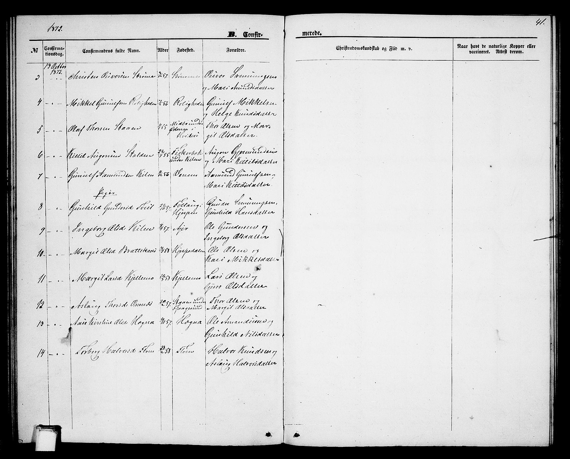 SAKO, Lunde kirkebøker, G/Gb/L0001: Klokkerbok nr. II 1, 1866-1887, s. 41