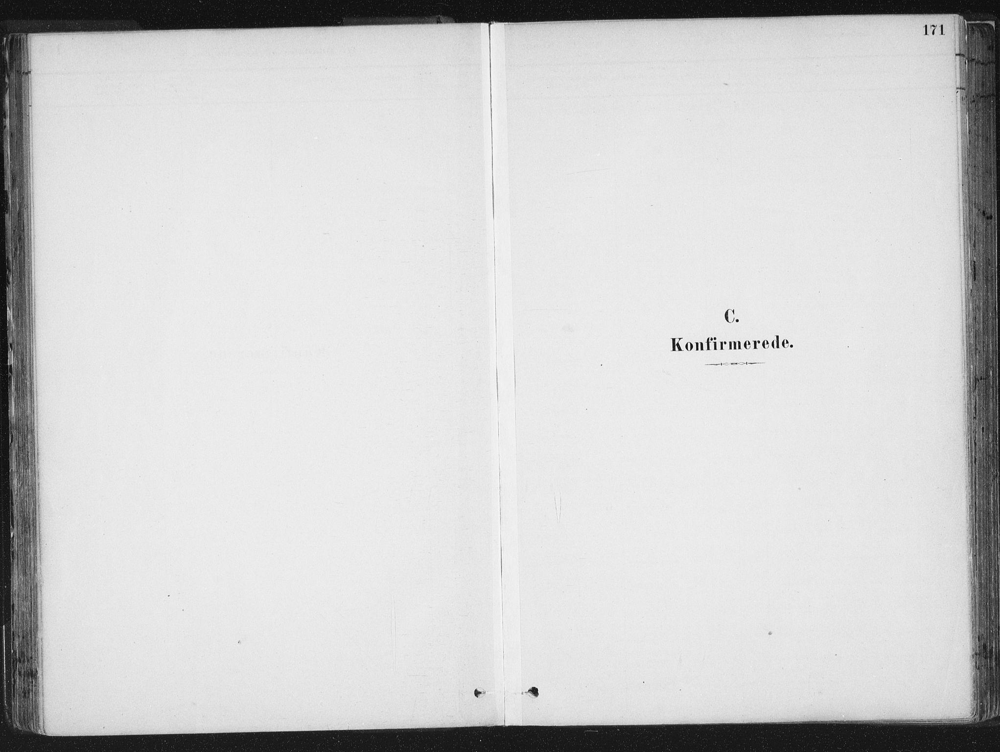 SAT, Ministerialprotokoller, klokkerbøker og fødselsregistre - Sør-Trøndelag, 659/L0739: Ministerialbok nr. 659A09, 1879-1893, s. 171