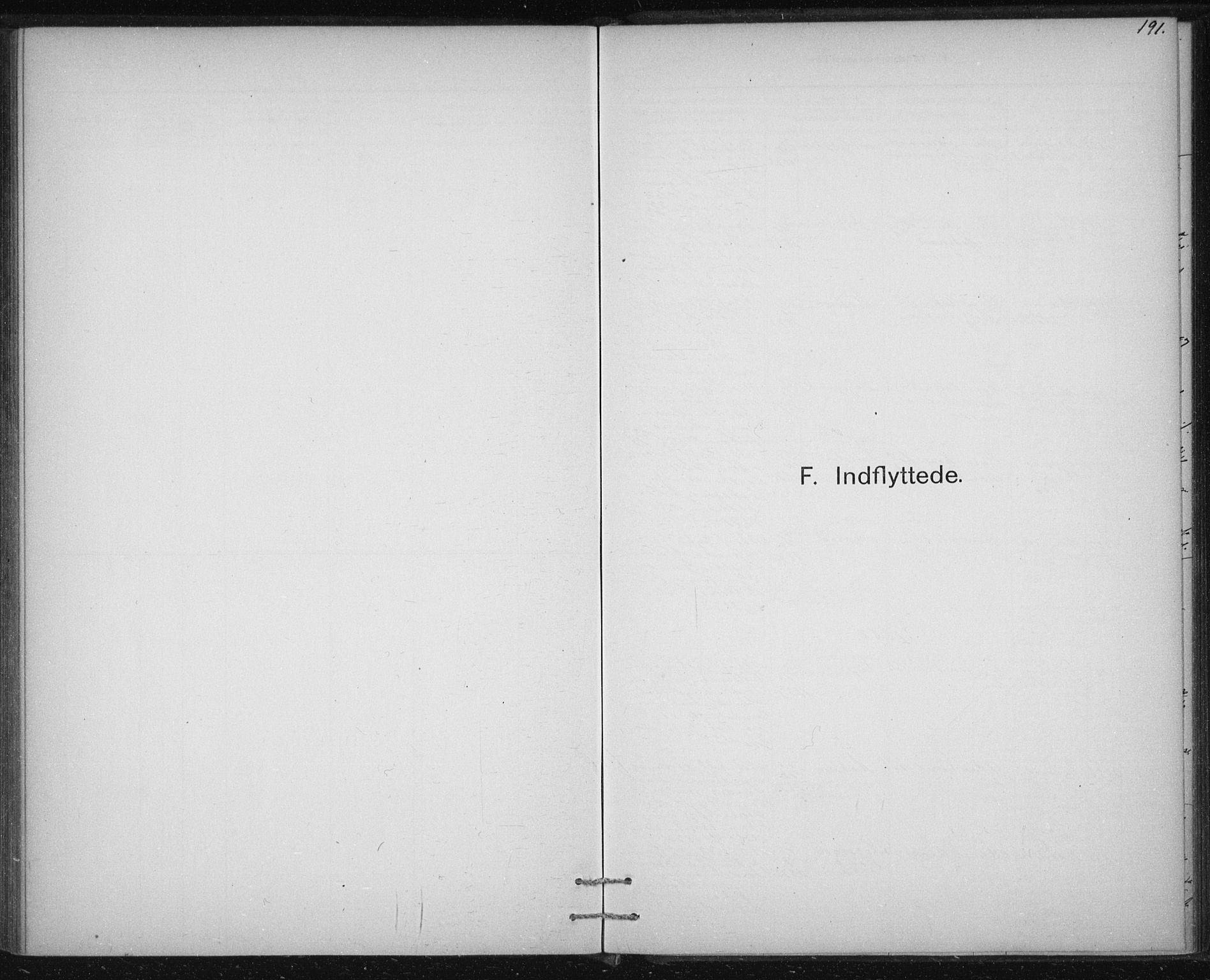 SAT, Ministerialprotokoller, klokkerbøker og fødselsregistre - Sør-Trøndelag, 613/L0392: Ministerialbok nr. 613A01, 1887-1906, s. 191
