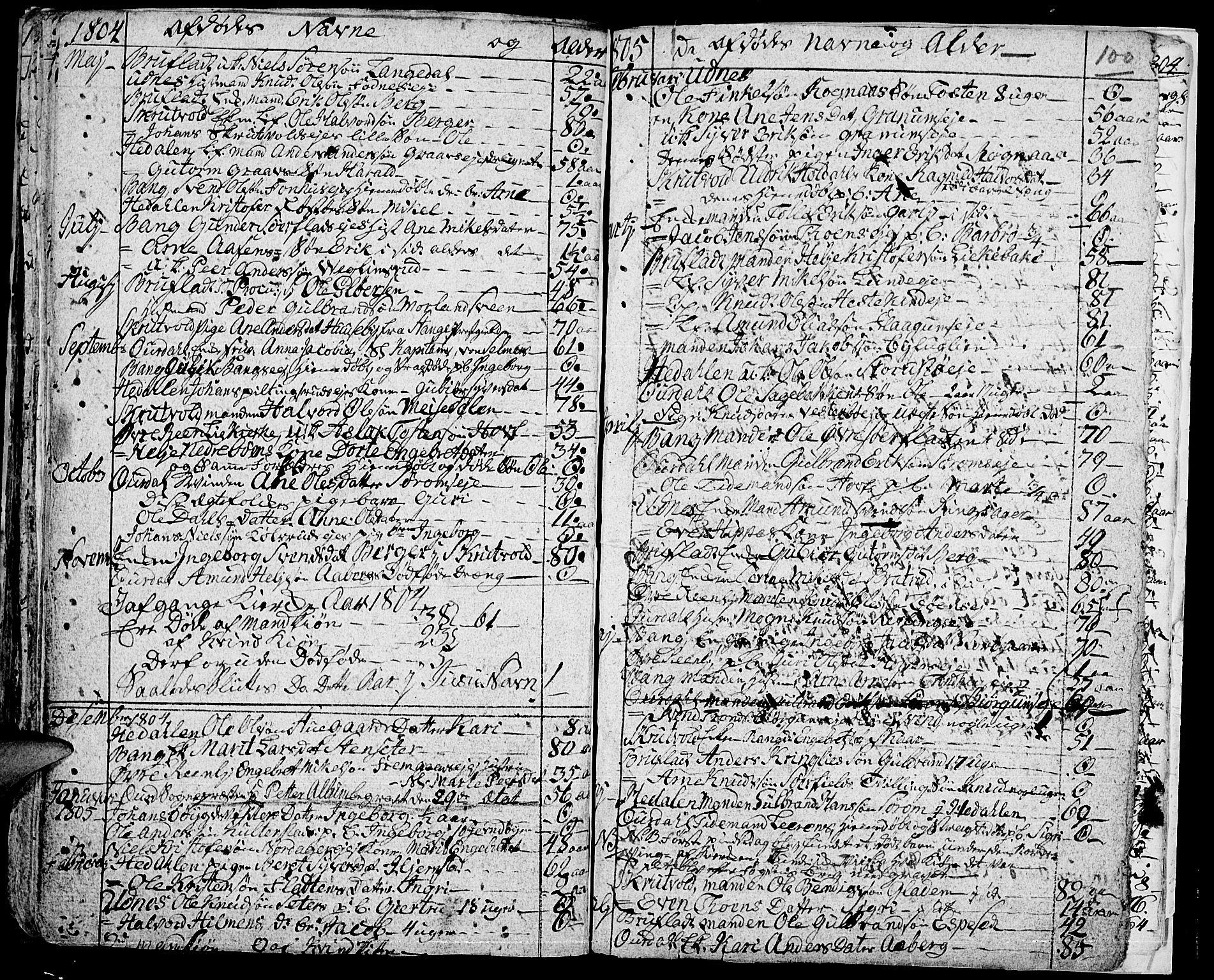 SAH, Aurdal prestekontor, Ministerialbok nr. 7, 1800-1808, s. 100