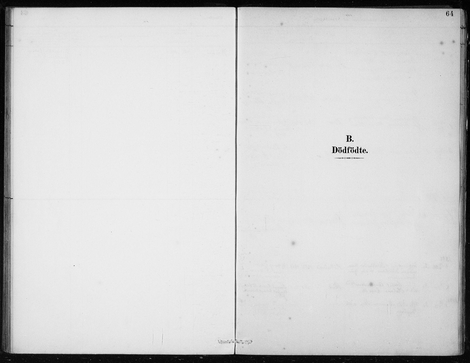 SAB, Lindås Sokneprestembete, H/Haa: Ministerialbok nr. F  1, 1886-1897, s. 64