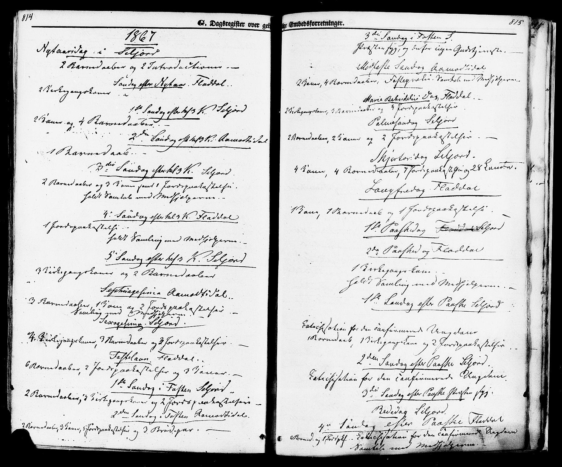 SAKO, Seljord kirkebøker, F/Fa/L0013: Ministerialbok nr. I 13, 1866-1876, s. 814-815