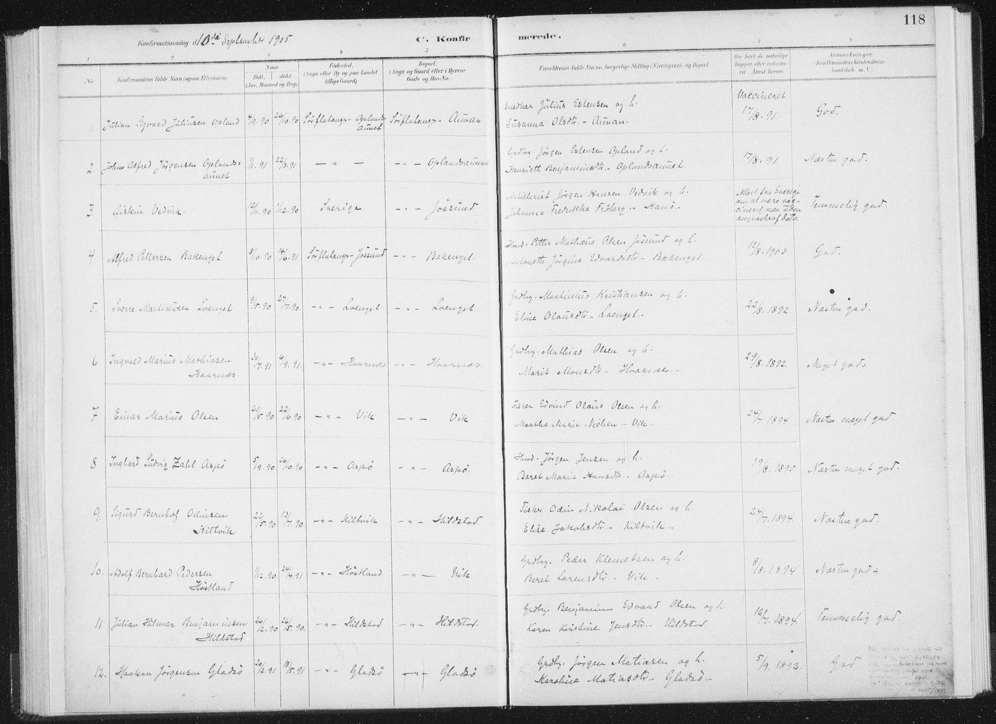 SAT, Ministerialprotokoller, klokkerbøker og fødselsregistre - Nord-Trøndelag, 771/L0597: Ministerialbok nr. 771A04, 1885-1910, s. 118