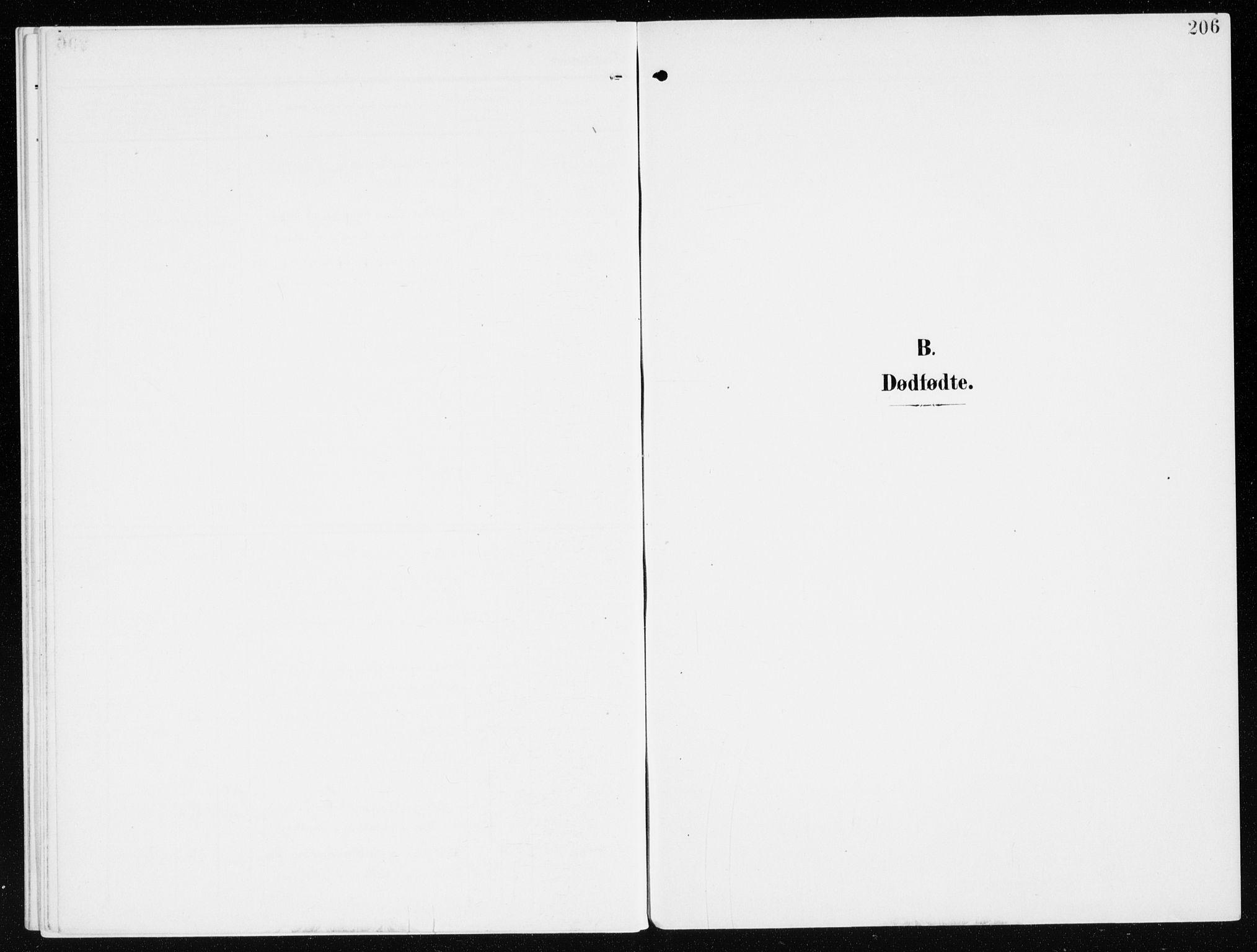 SAH, Furnes prestekontor, K/Ka/L0001: Ministerialbok nr. 1, 1907-1935, s. 206