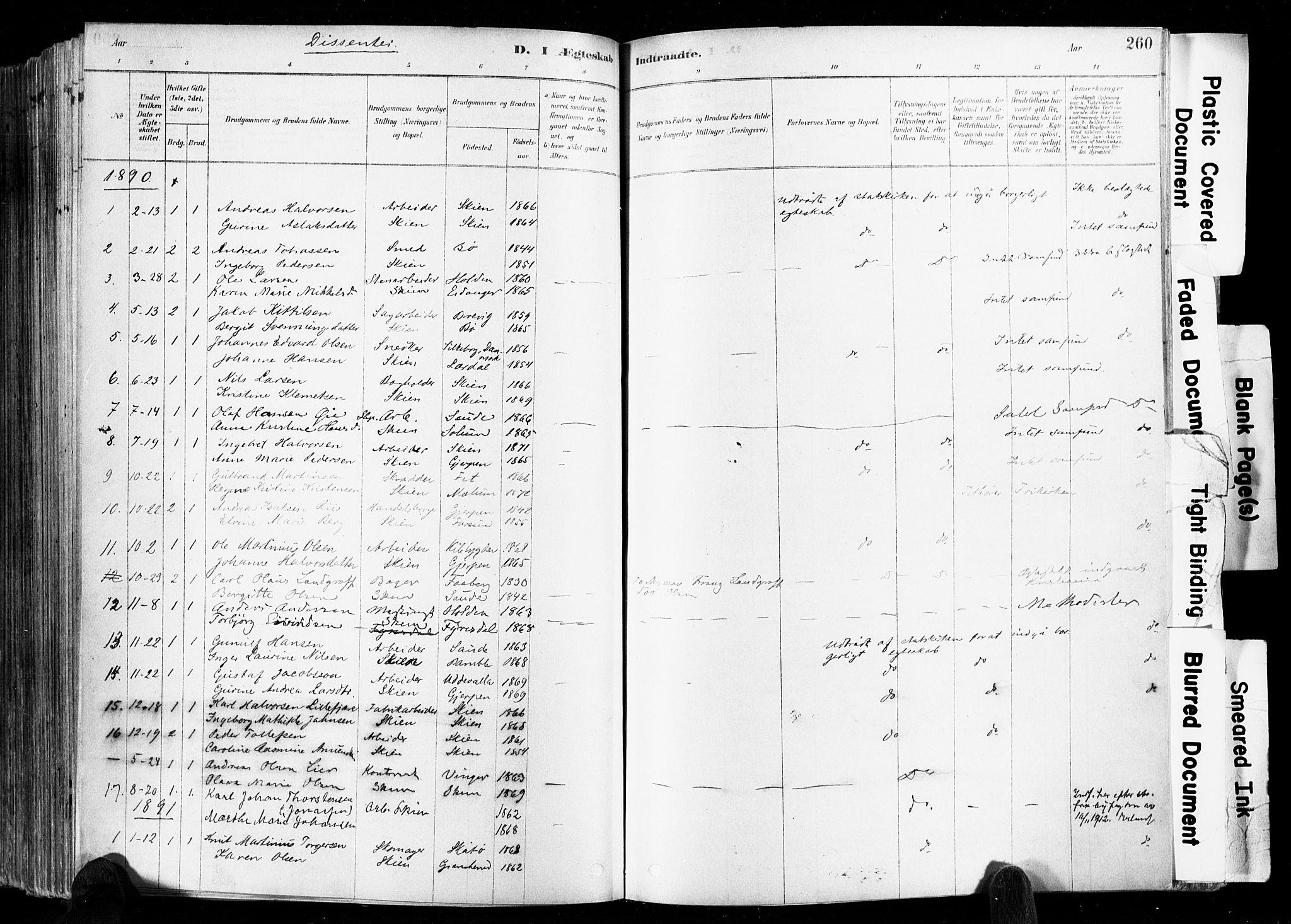 SAKO, Skien kirkebøker, F/Fa/L0009: Ministerialbok nr. 9, 1878-1890, s. 260