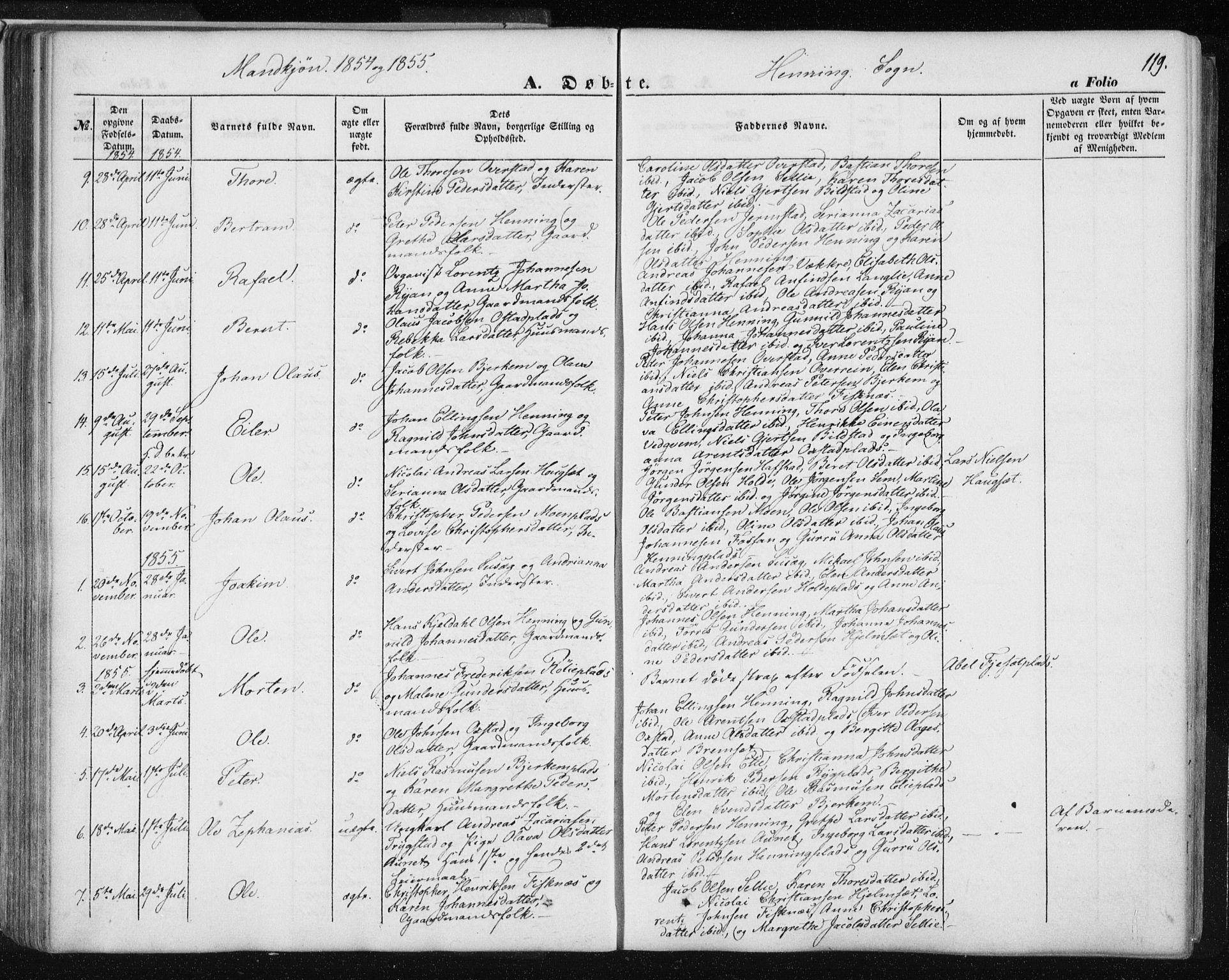 SAT, Ministerialprotokoller, klokkerbøker og fødselsregistre - Nord-Trøndelag, 735/L0342: Ministerialbok nr. 735A07 /3, 1849-1862, s. 119