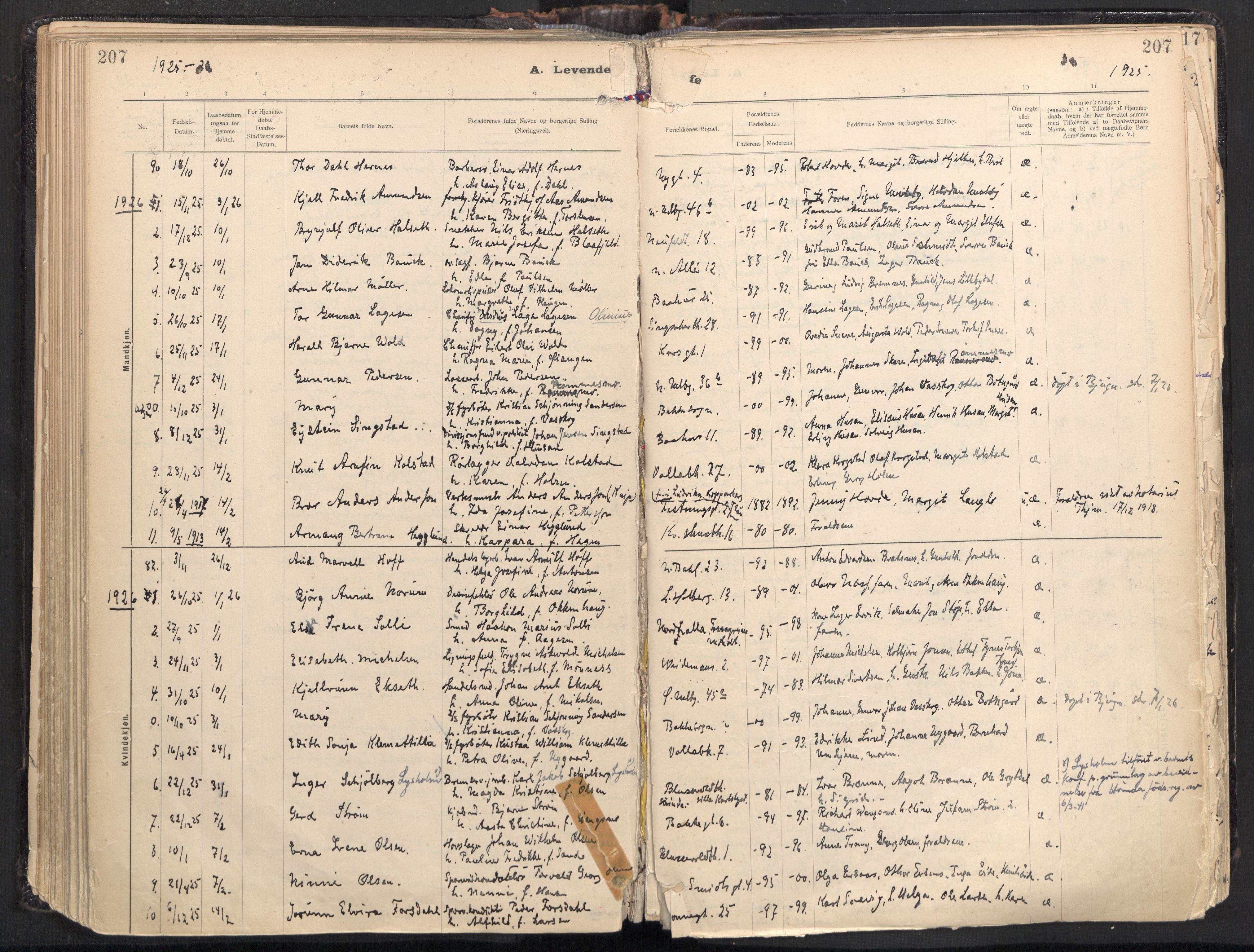 SAT, Ministerialprotokoller, klokkerbøker og fødselsregistre - Sør-Trøndelag, 604/L0205: Ministerialbok nr. 604A25, 1917-1932, s. 207
