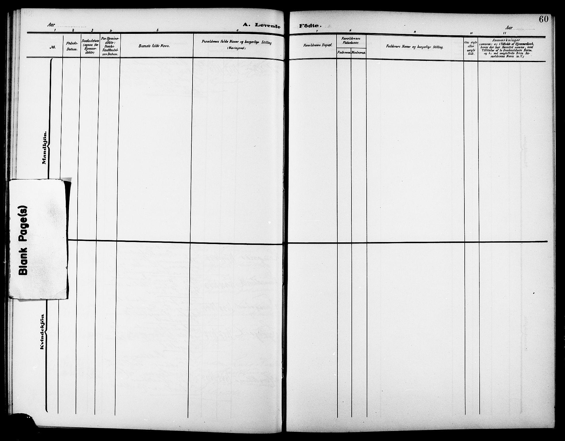 SAT, Ministerialprotokoller, klokkerbøker og fødselsregistre - Nord-Trøndelag, 744/L0424: Klokkerbok nr. 744C03, 1906-1923, s. 60