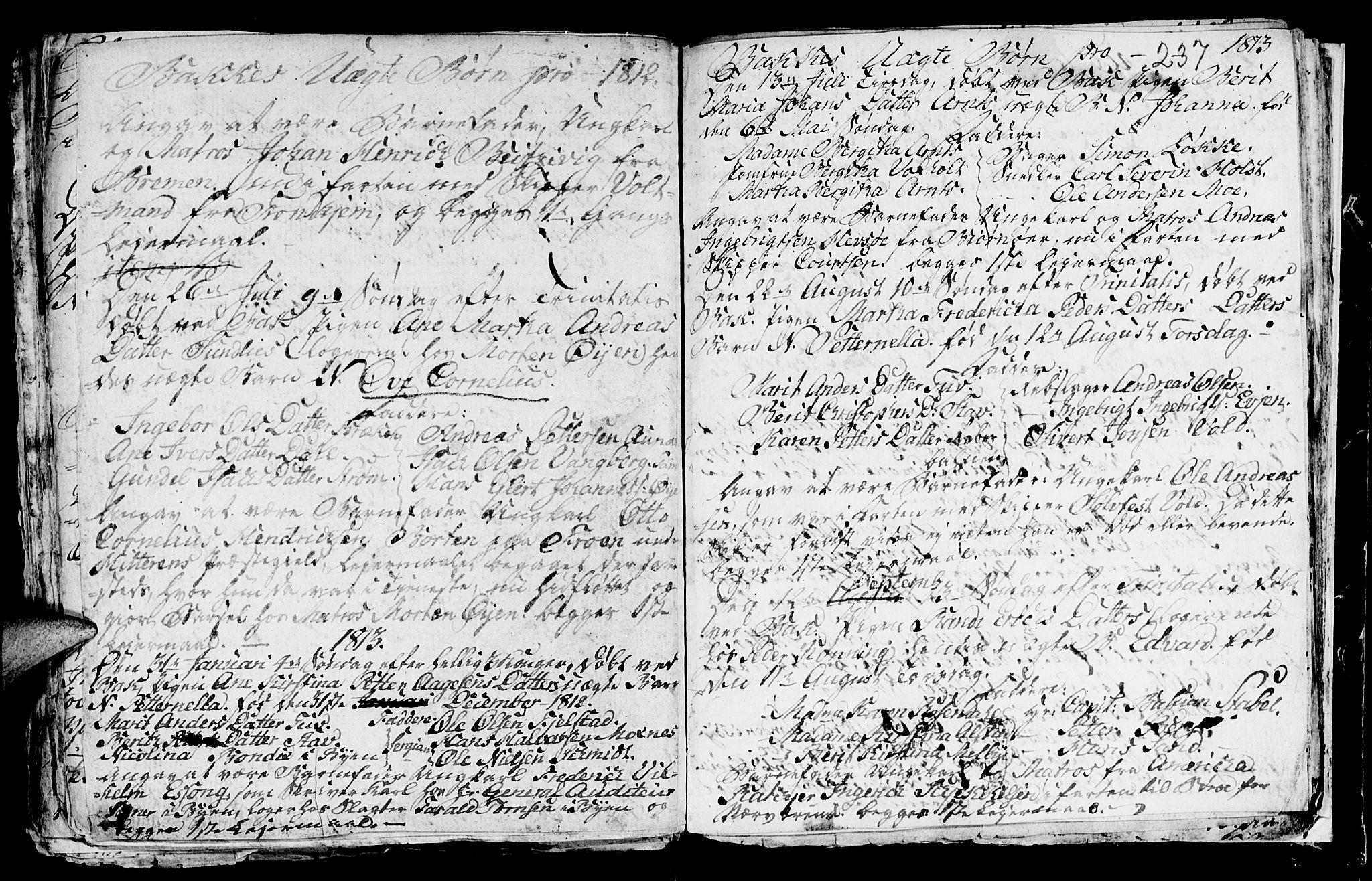 SAT, Ministerialprotokoller, klokkerbøker og fødselsregistre - Sør-Trøndelag, 604/L0218: Klokkerbok nr. 604C01, 1754-1819, s. 237