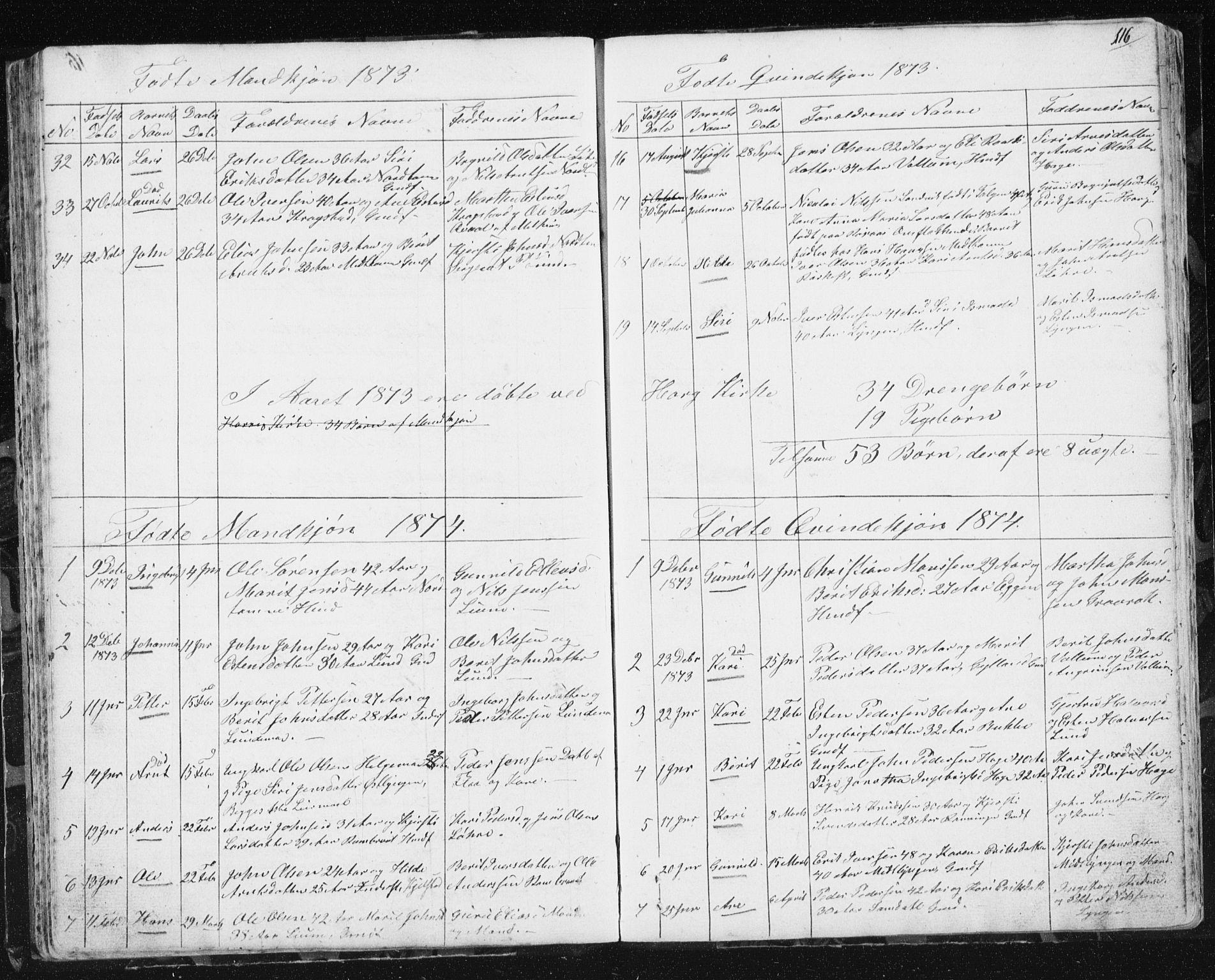 SAT, Ministerialprotokoller, klokkerbøker og fødselsregistre - Sør-Trøndelag, 692/L1110: Klokkerbok nr. 692C05, 1849-1889, s. 116