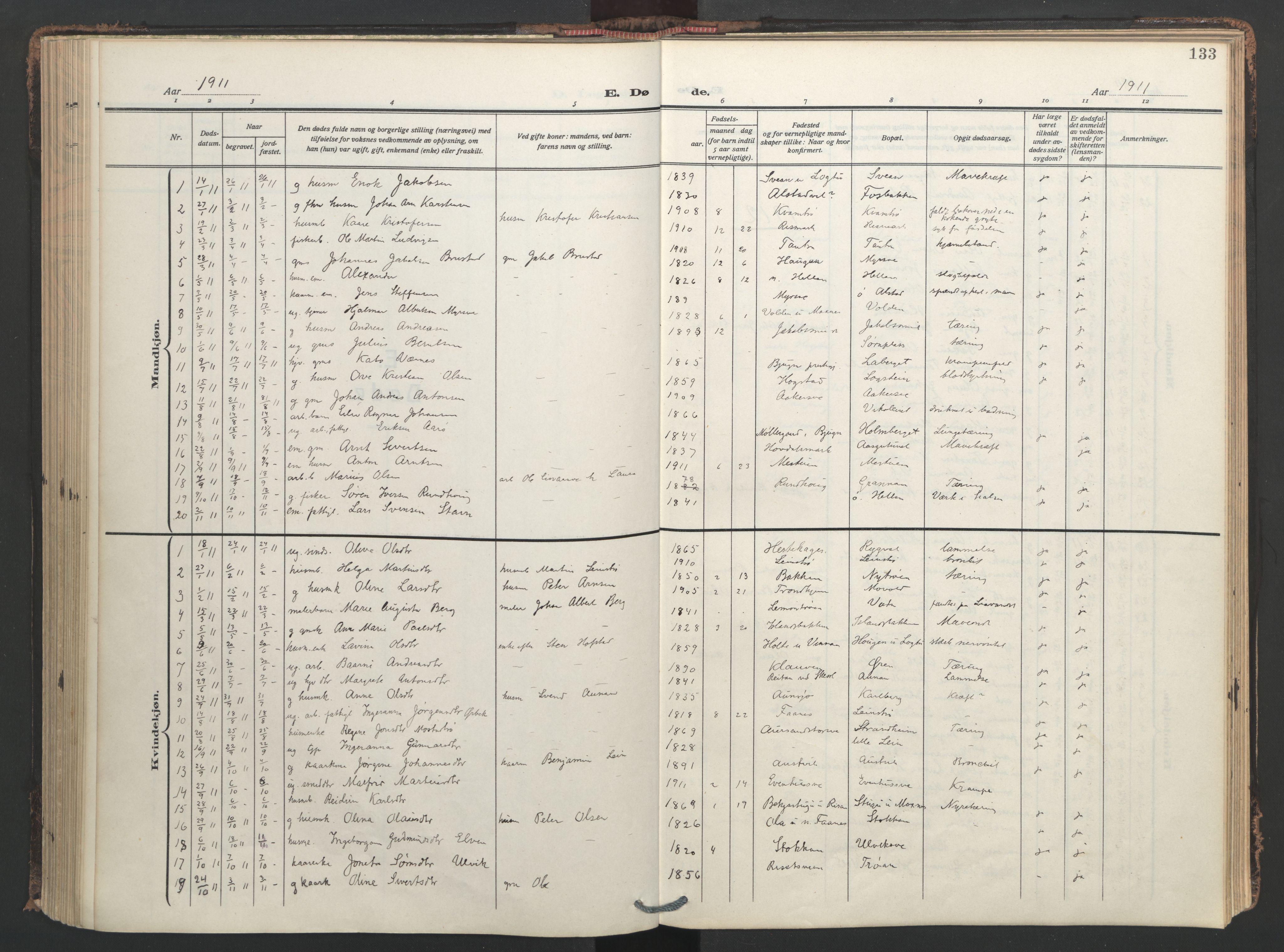 SAT, Ministerialprotokoller, klokkerbøker og fødselsregistre - Nord-Trøndelag, 713/L0123: Ministerialbok nr. 713A12, 1911-1925, s. 133