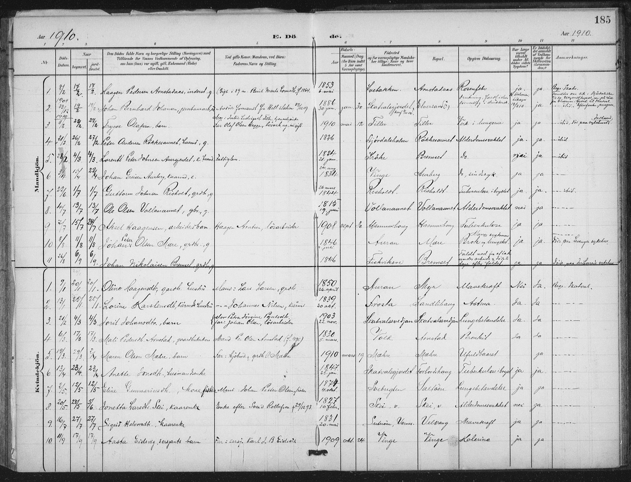 SAT, Ministerialprotokoller, klokkerbøker og fødselsregistre - Nord-Trøndelag, 712/L0101: Ministerialbok nr. 712A02, 1901-1916, s. 185