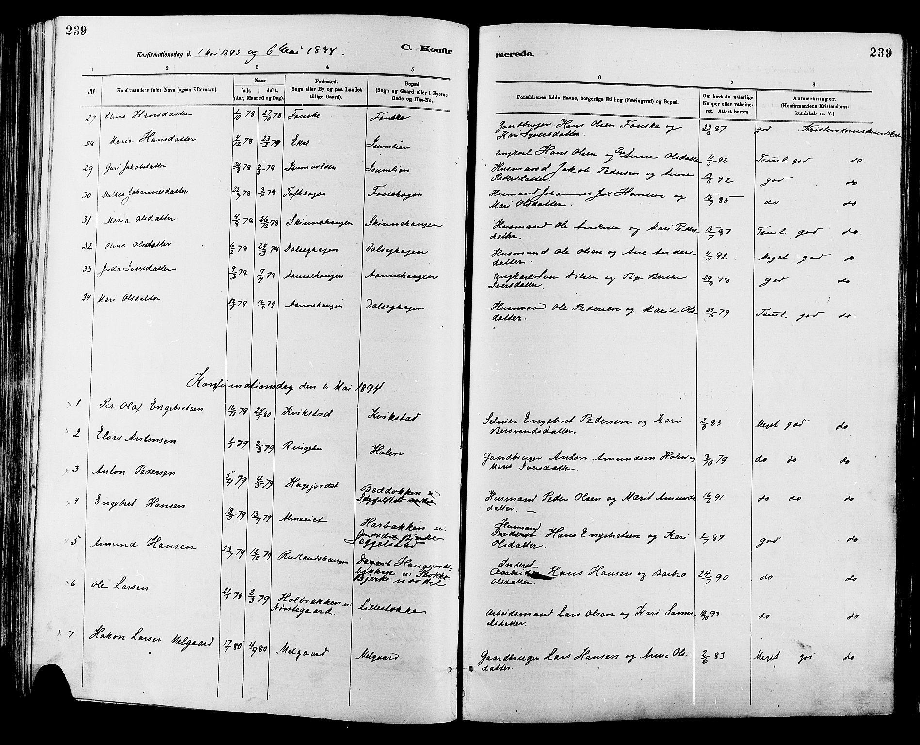 SAH, Sør-Fron prestekontor, H/Ha/Haa/L0003: Ministerialbok nr. 3, 1881-1897, s. 239