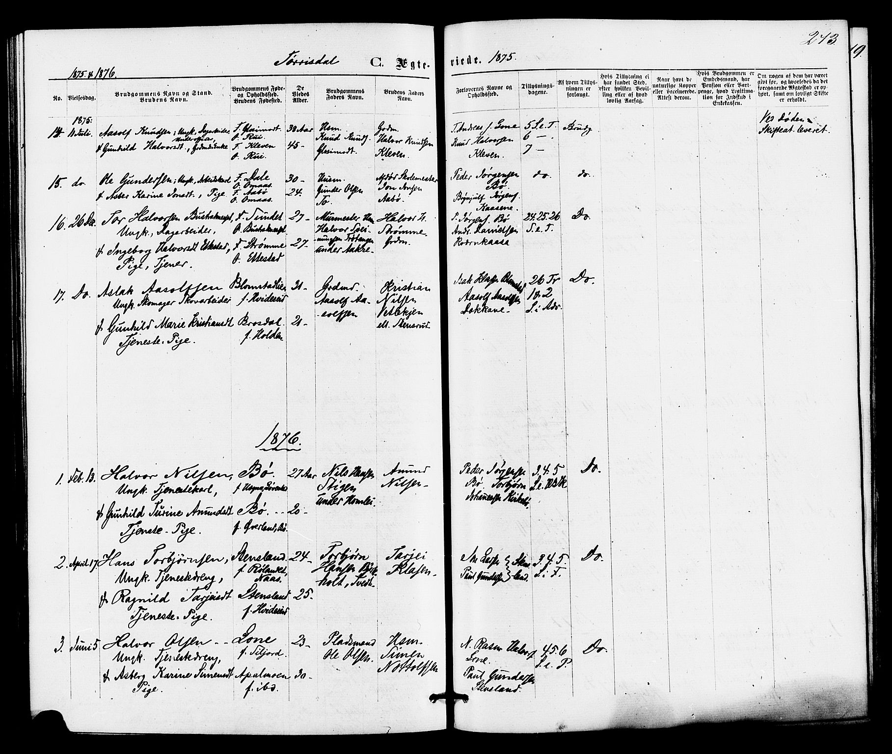 SAKO, Drangedal kirkebøker, F/Fa/L0009: Ministerialbok nr. 9 /2, 1872-1884, s. 273