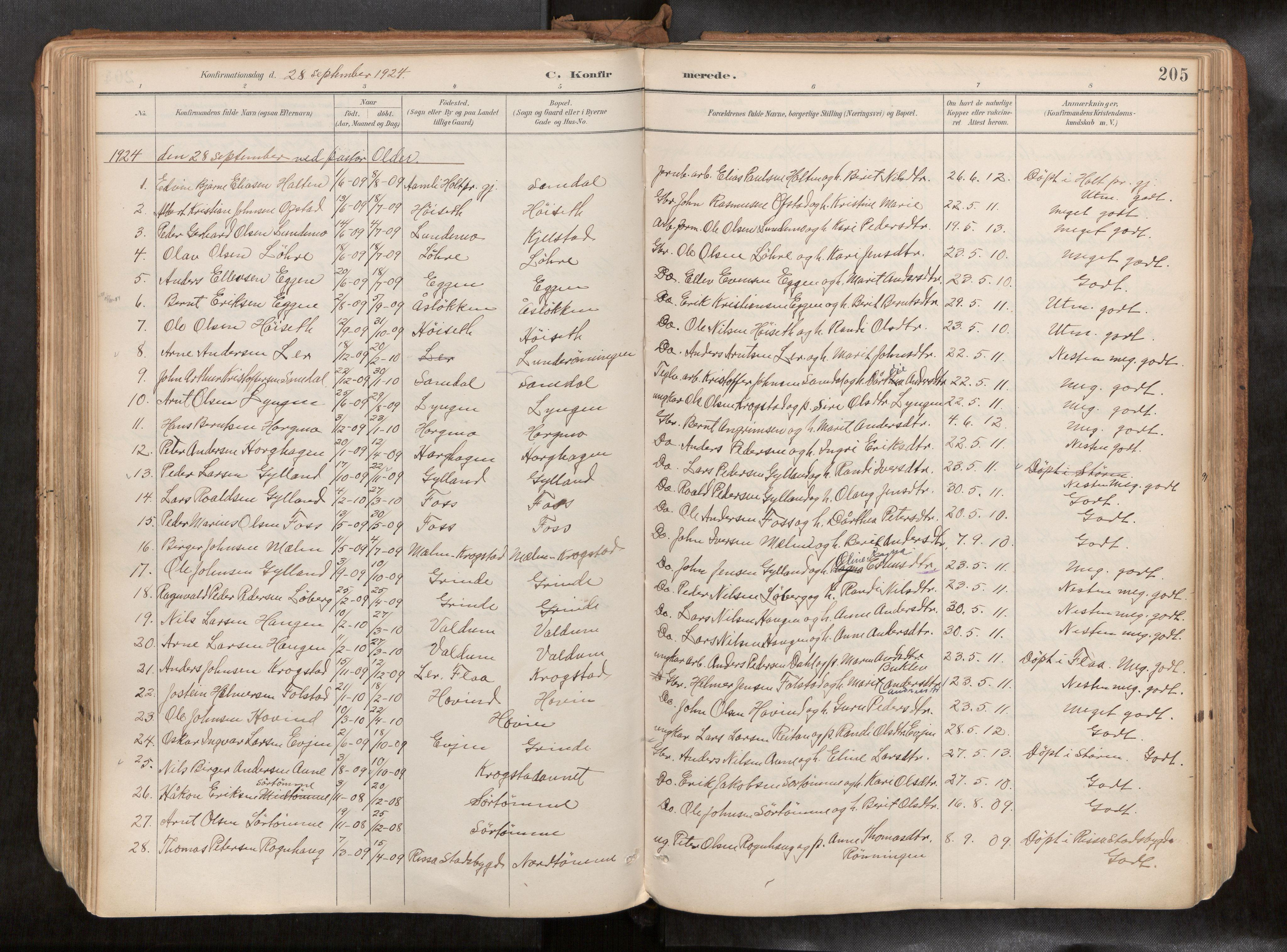 SAT, Ministerialprotokoller, klokkerbøker og fødselsregistre - Sør-Trøndelag, 692/L1105b: Ministerialbok nr. 692A06, 1891-1934, s. 205