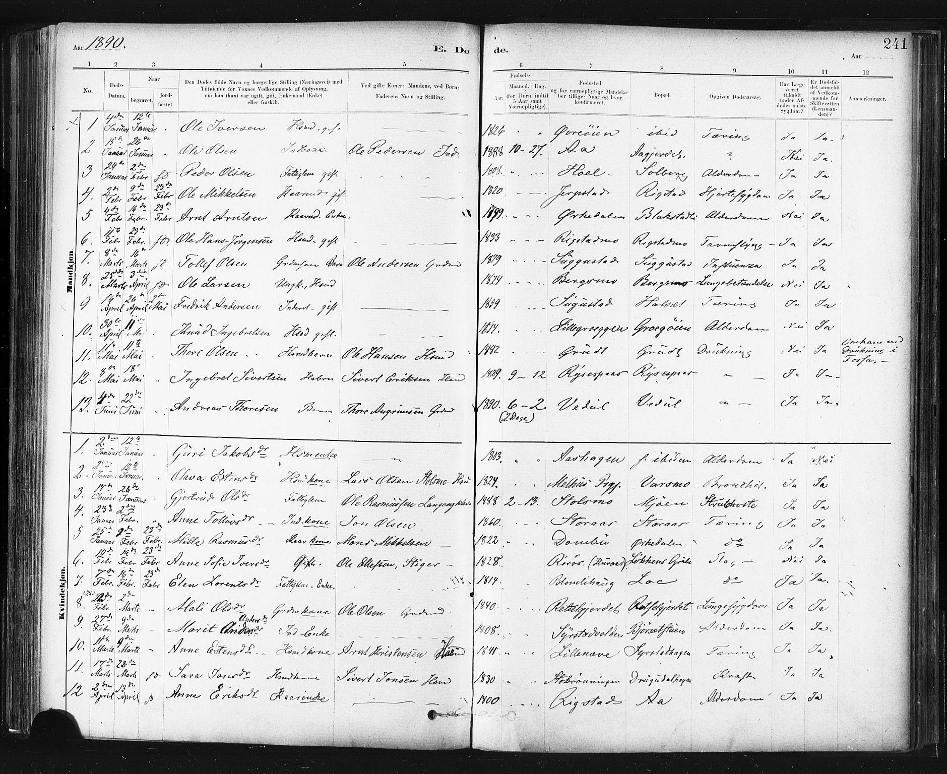 SAT, Ministerialprotokoller, klokkerbøker og fødselsregistre - Sør-Trøndelag, 672/L0857: Ministerialbok nr. 672A09, 1882-1893, s. 241