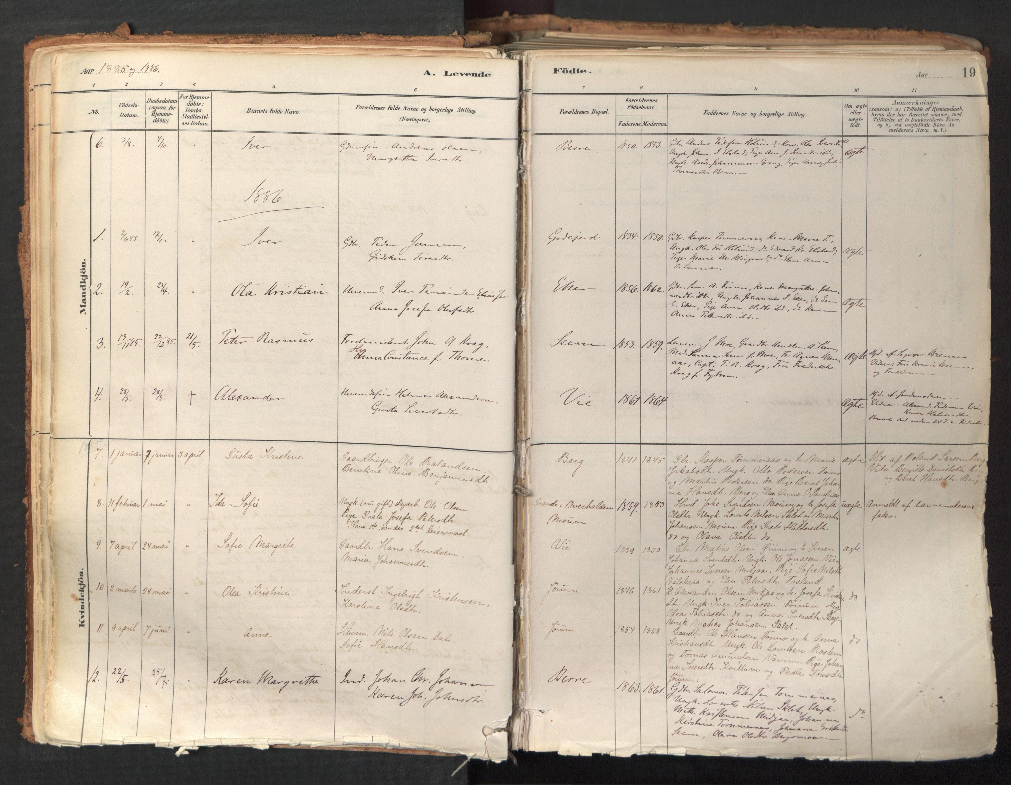 SAT, Ministerialprotokoller, klokkerbøker og fødselsregistre - Nord-Trøndelag, 758/L0519: Ministerialbok nr. 758A04, 1880-1926, s. 19