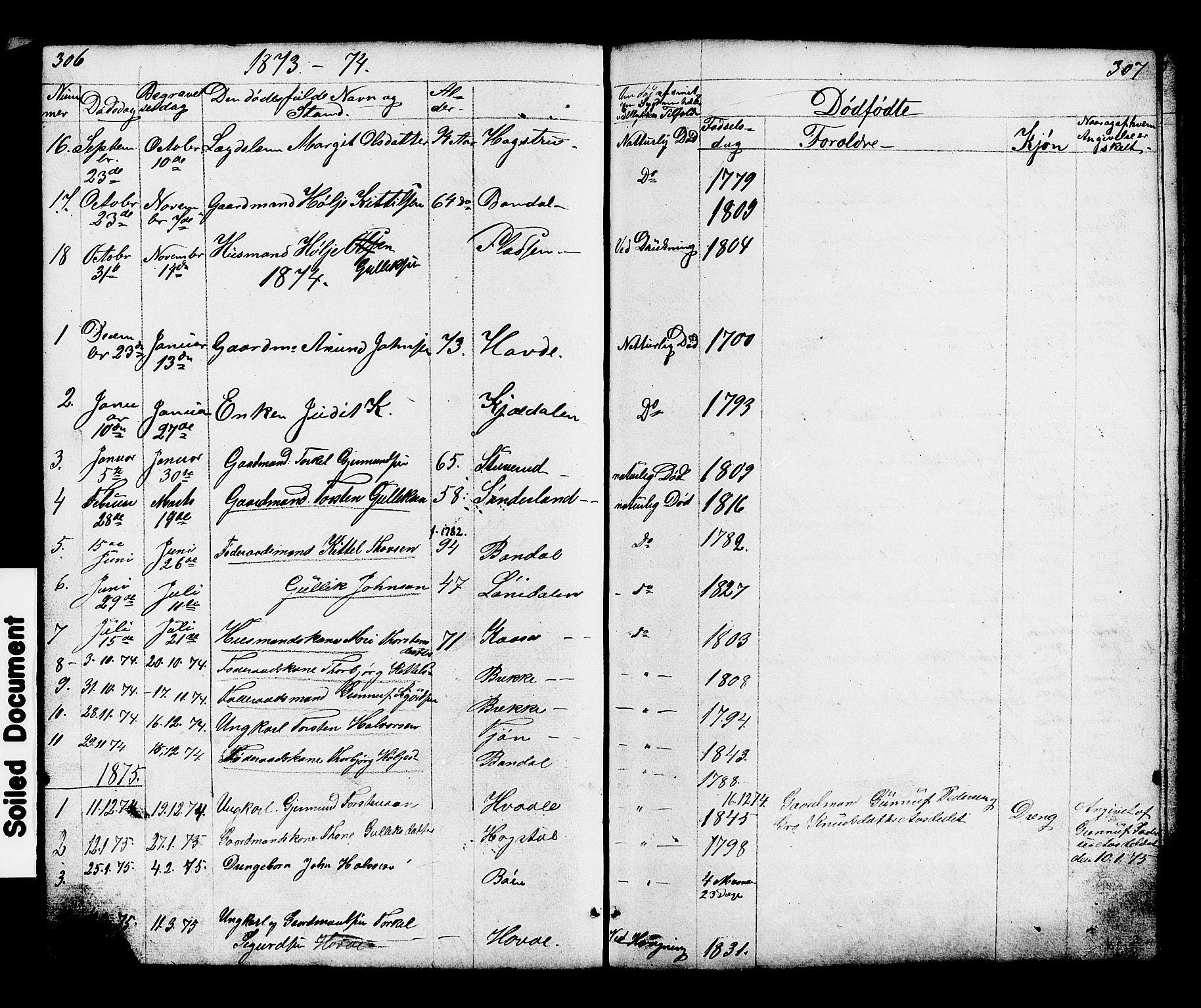 SAKO, Hjartdal kirkebøker, G/Gc/L0002: Klokkerbok nr. III 2, 1854-1890, s. 306-307