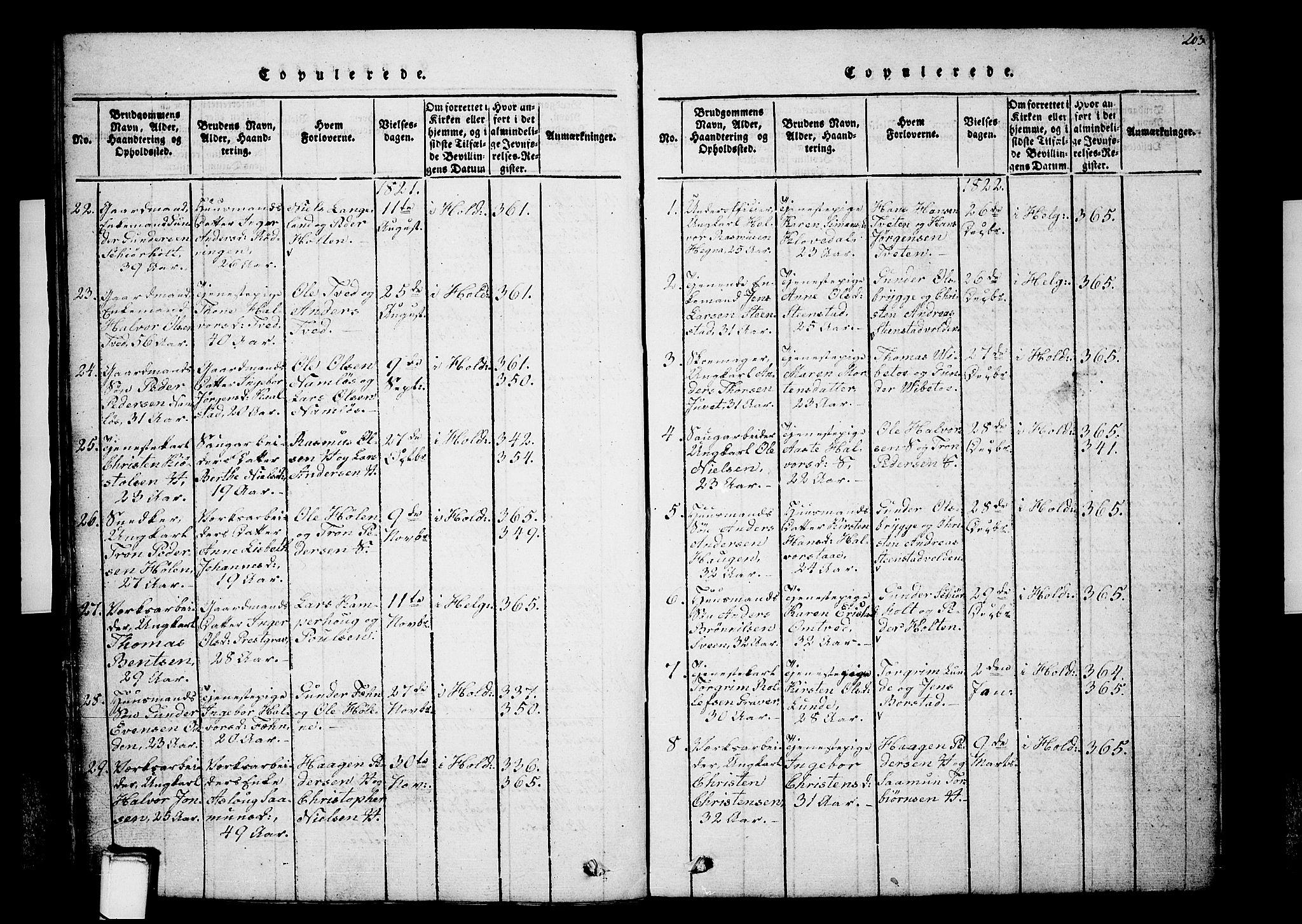 SAKO, Holla kirkebøker, G/Ga/L0001: Klokkerbok nr. I 1, 1814-1830, s. 203