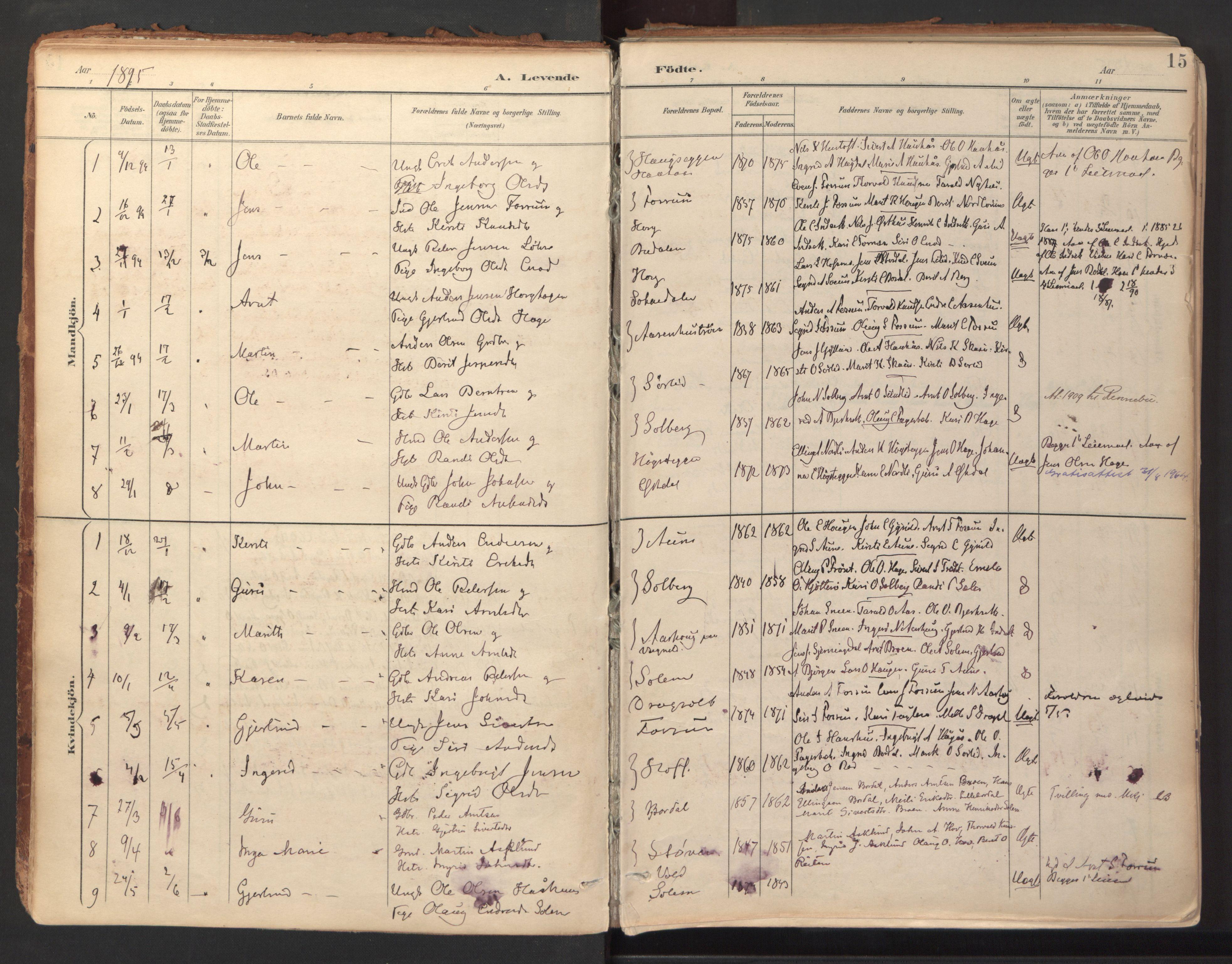 SAT, Ministerialprotokoller, klokkerbøker og fødselsregistre - Sør-Trøndelag, 689/L1041: Ministerialbok nr. 689A06, 1891-1923, s. 15