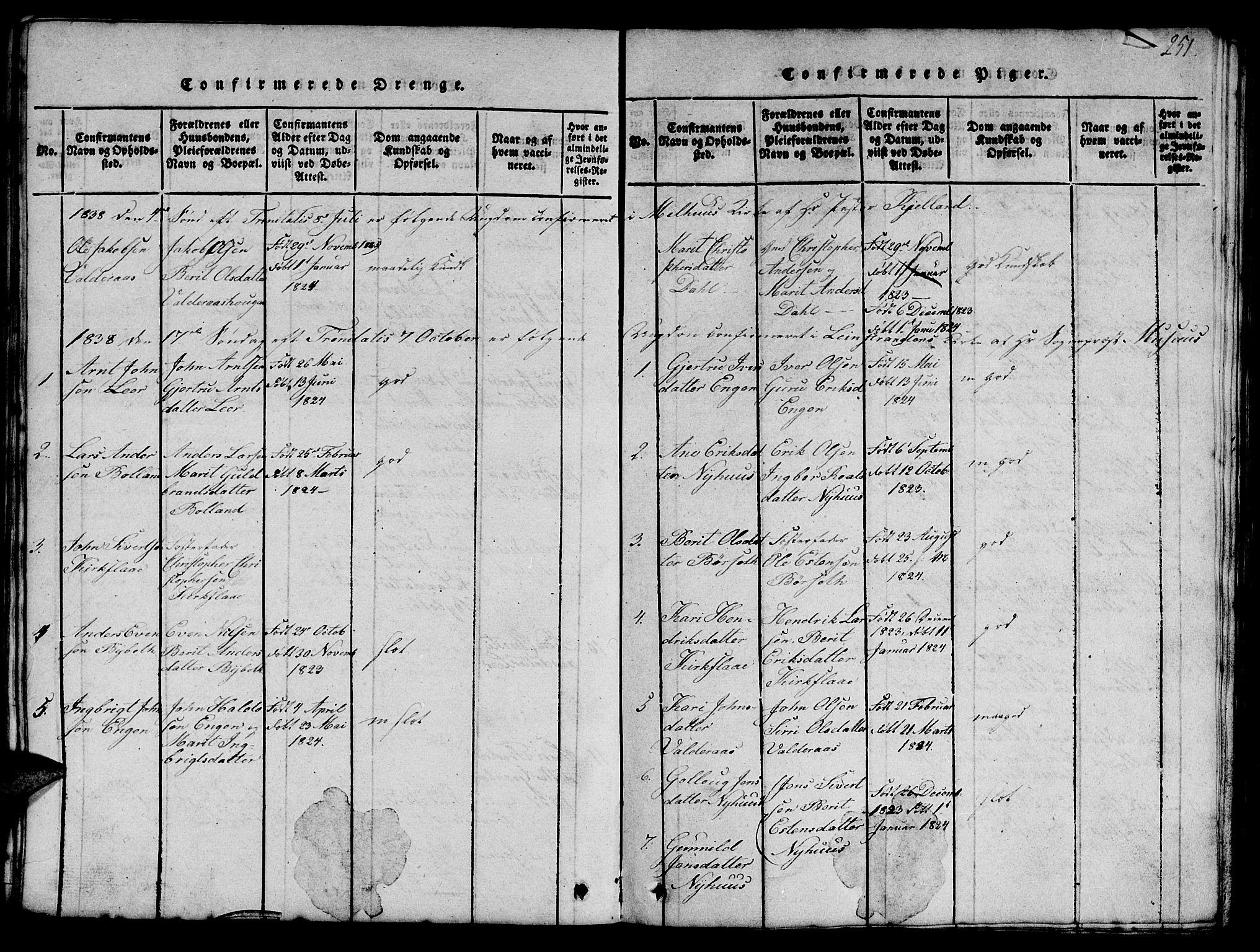 SAT, Ministerialprotokoller, klokkerbøker og fødselsregistre - Sør-Trøndelag, 693/L1121: Klokkerbok nr. 693C02, 1816-1869, s. 251