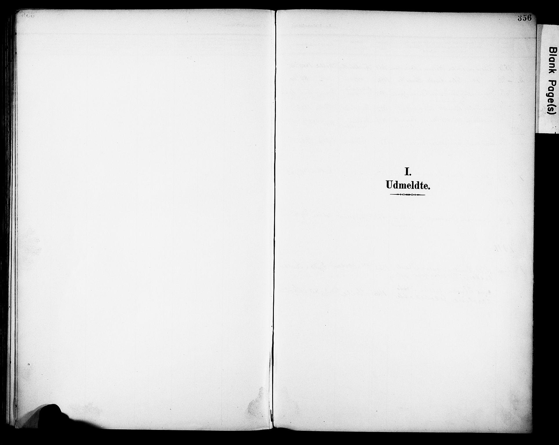 SAH, Vestre Toten prestekontor, H/Ha/Haa/L0013: Ministerialbok nr. 13, 1895-1911, s. 356