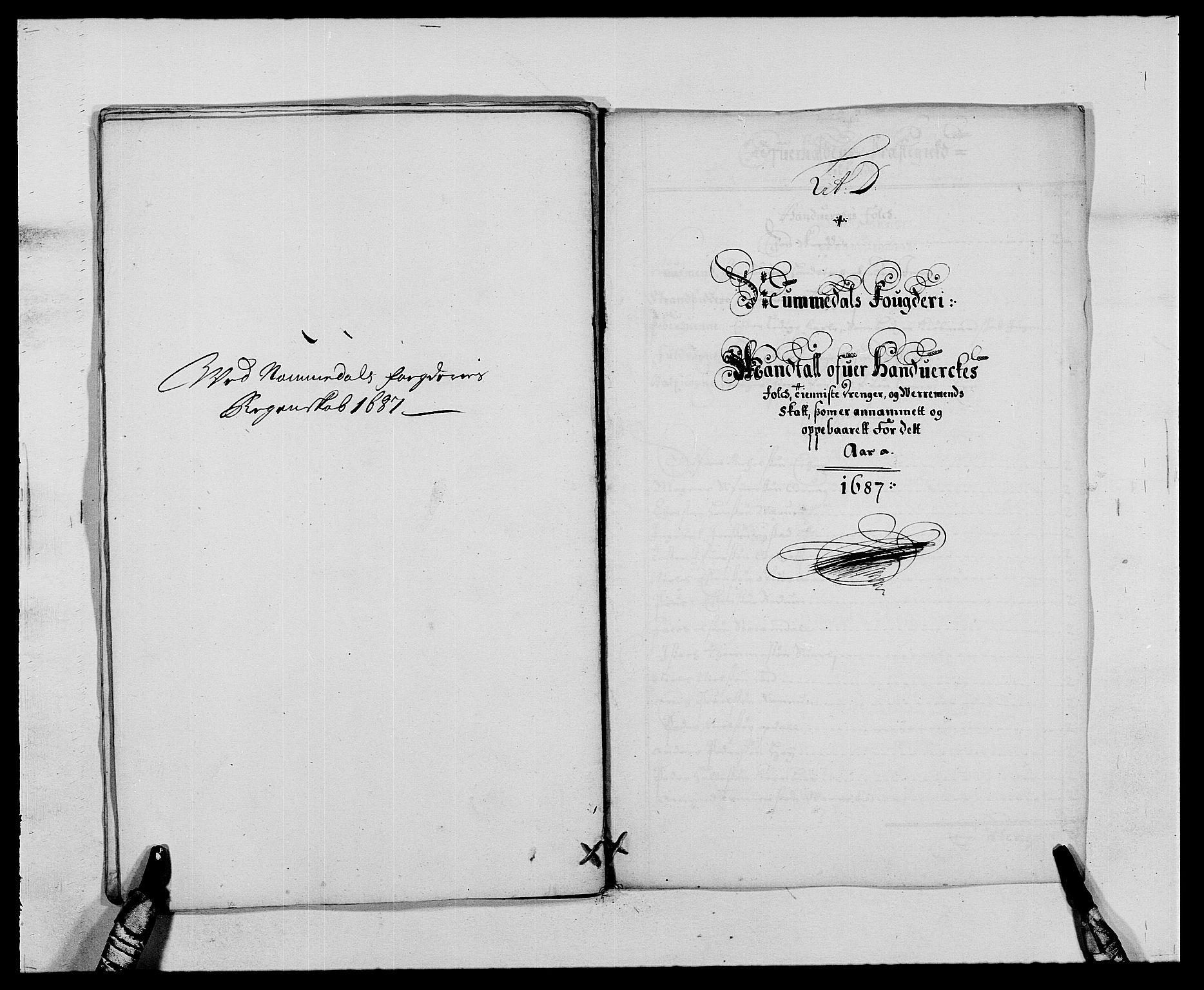 RA, Rentekammeret inntil 1814, Reviderte regnskaper, Fogderegnskap, R64/L4422: Fogderegnskap Namdal, 1687-1689, s. 17