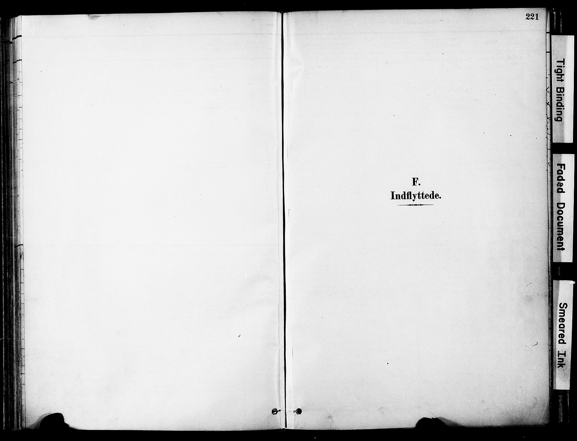 SAT, Ministerialprotokoller, klokkerbøker og fødselsregistre - Nord-Trøndelag, 755/L0494: Ministerialbok nr. 755A03, 1882-1902, s. 221