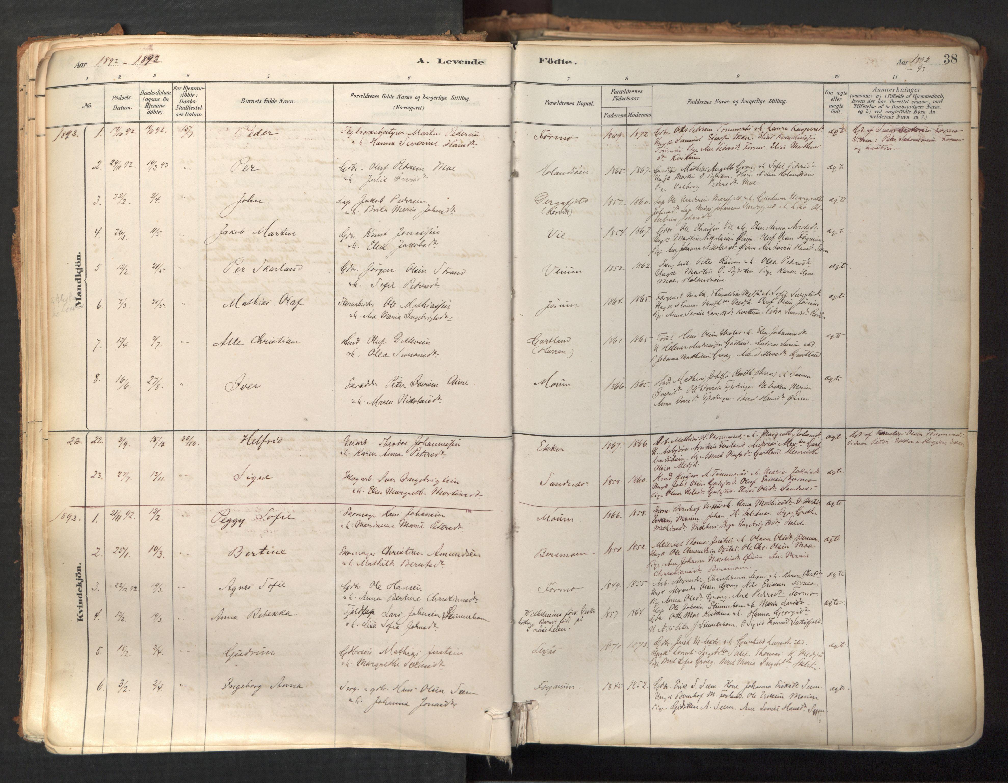 SAT, Ministerialprotokoller, klokkerbøker og fødselsregistre - Nord-Trøndelag, 758/L0519: Ministerialbok nr. 758A04, 1880-1926, s. 38