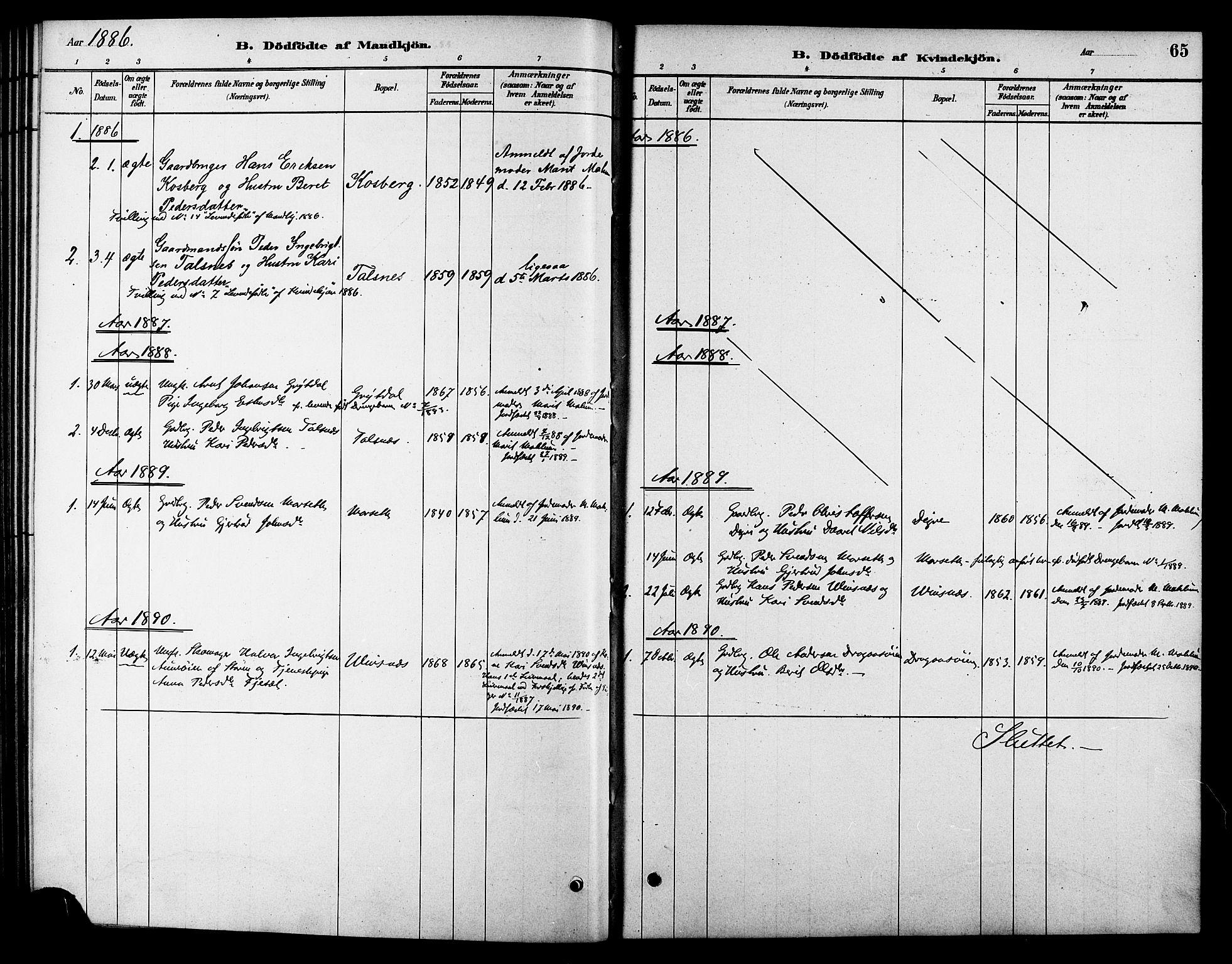 SAT, Ministerialprotokoller, klokkerbøker og fødselsregistre - Sør-Trøndelag, 688/L1024: Ministerialbok nr. 688A01, 1879-1890, s. 65