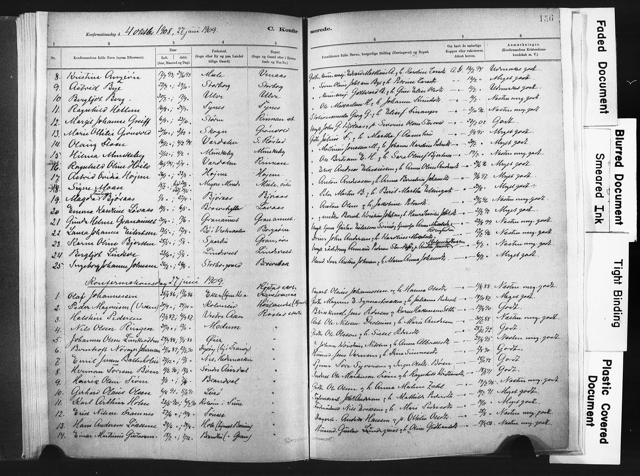 SAT, Ministerialprotokoller, klokkerbøker og fødselsregistre - Nord-Trøndelag, 721/L0207: Ministerialbok nr. 721A02, 1880-1911, s. 156