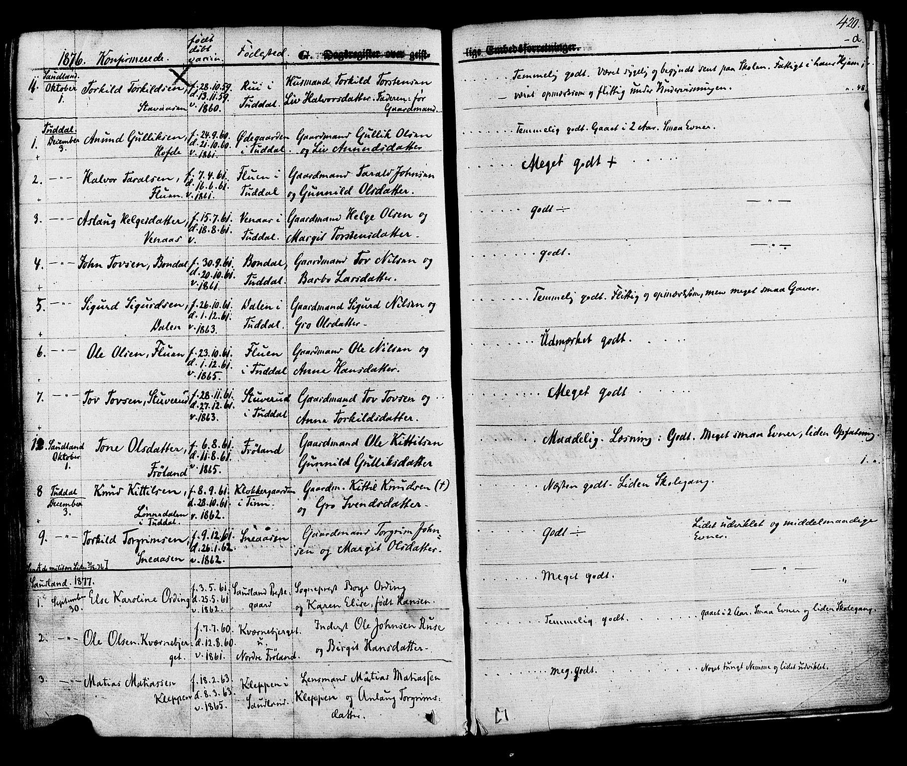 SAKO, Hjartdal kirkebøker, F/Fa/L0009: Ministerialbok nr. I 9, 1860-1879, s. 420
