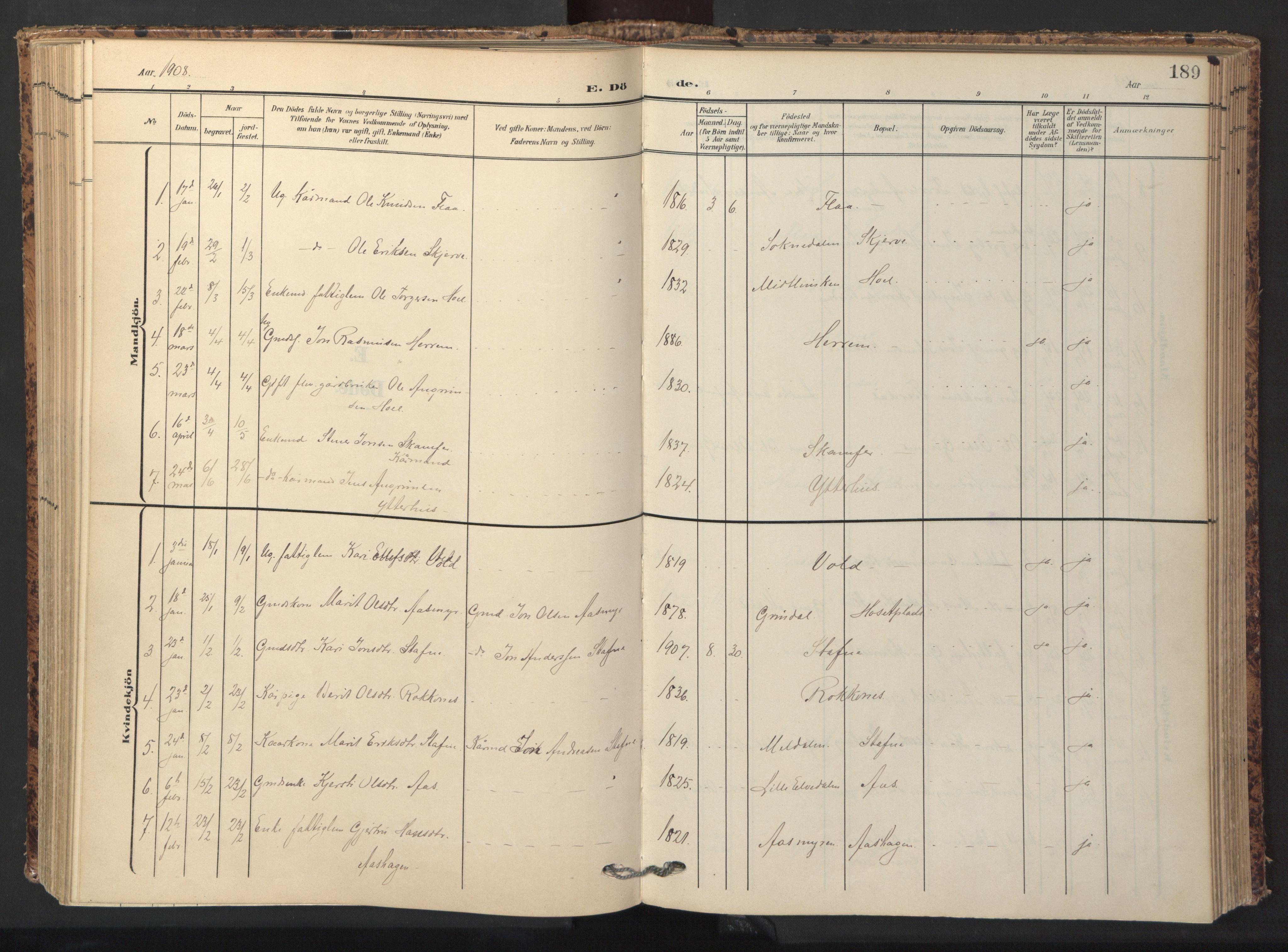 SAT, Ministerialprotokoller, klokkerbøker og fødselsregistre - Sør-Trøndelag, 674/L0873: Ministerialbok nr. 674A05, 1908-1923, s. 189