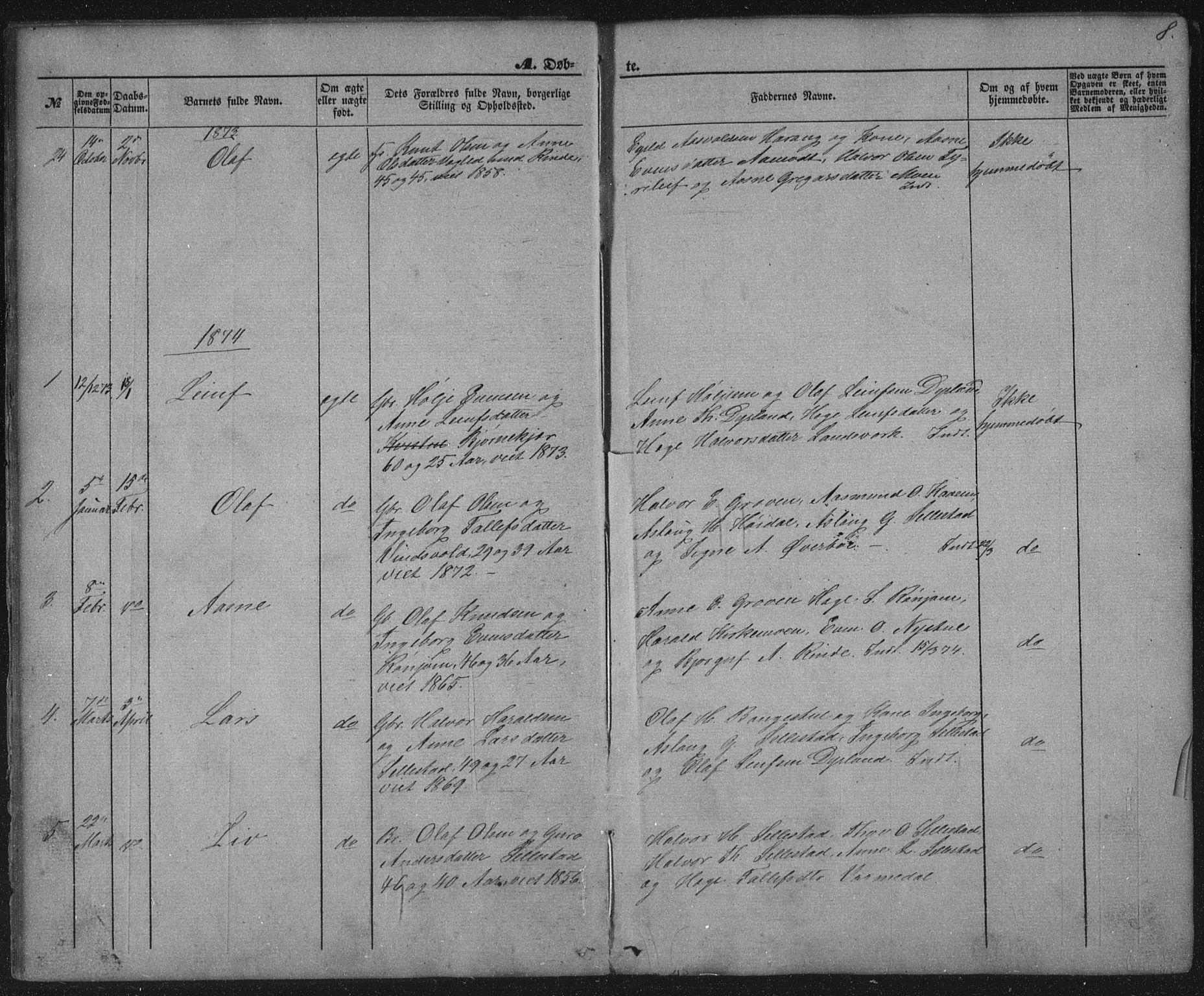 SAKO, Seljord kirkebøker, G/Gc/L0002: Klokkerbok nr. III 2, 1872-1886, s. 8