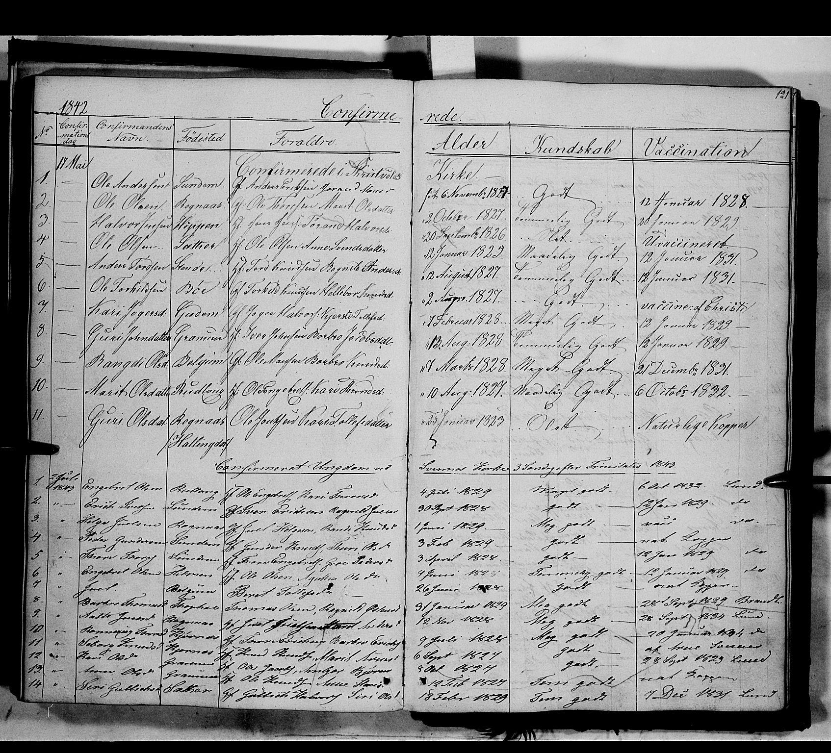 SAH, Nord-Aurdal prestekontor, Ministerialbok nr. 6, 1842-1863, s. 121