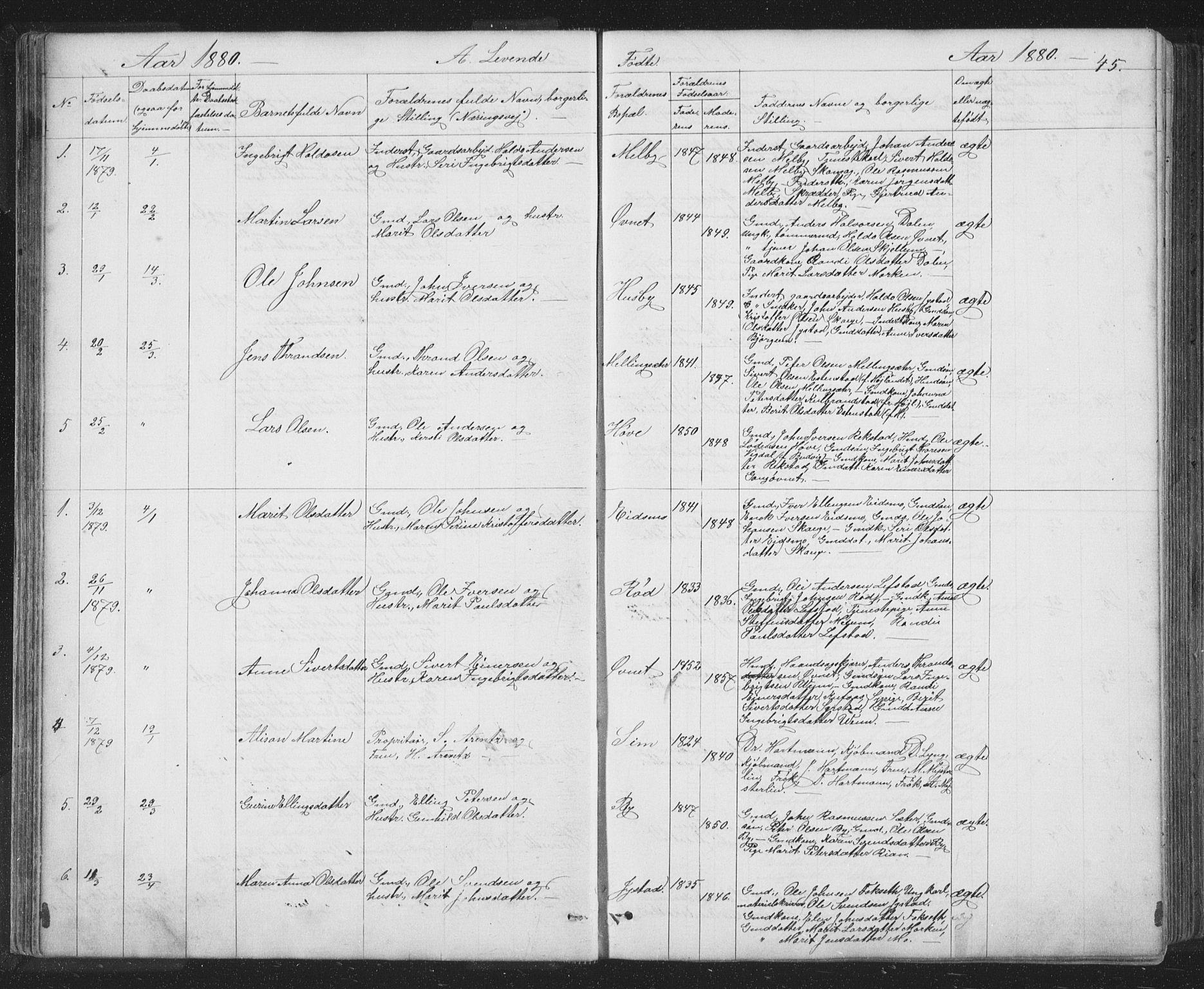 SAT, Ministerialprotokoller, klokkerbøker og fødselsregistre - Sør-Trøndelag, 667/L0798: Klokkerbok nr. 667C03, 1867-1929, s. 45