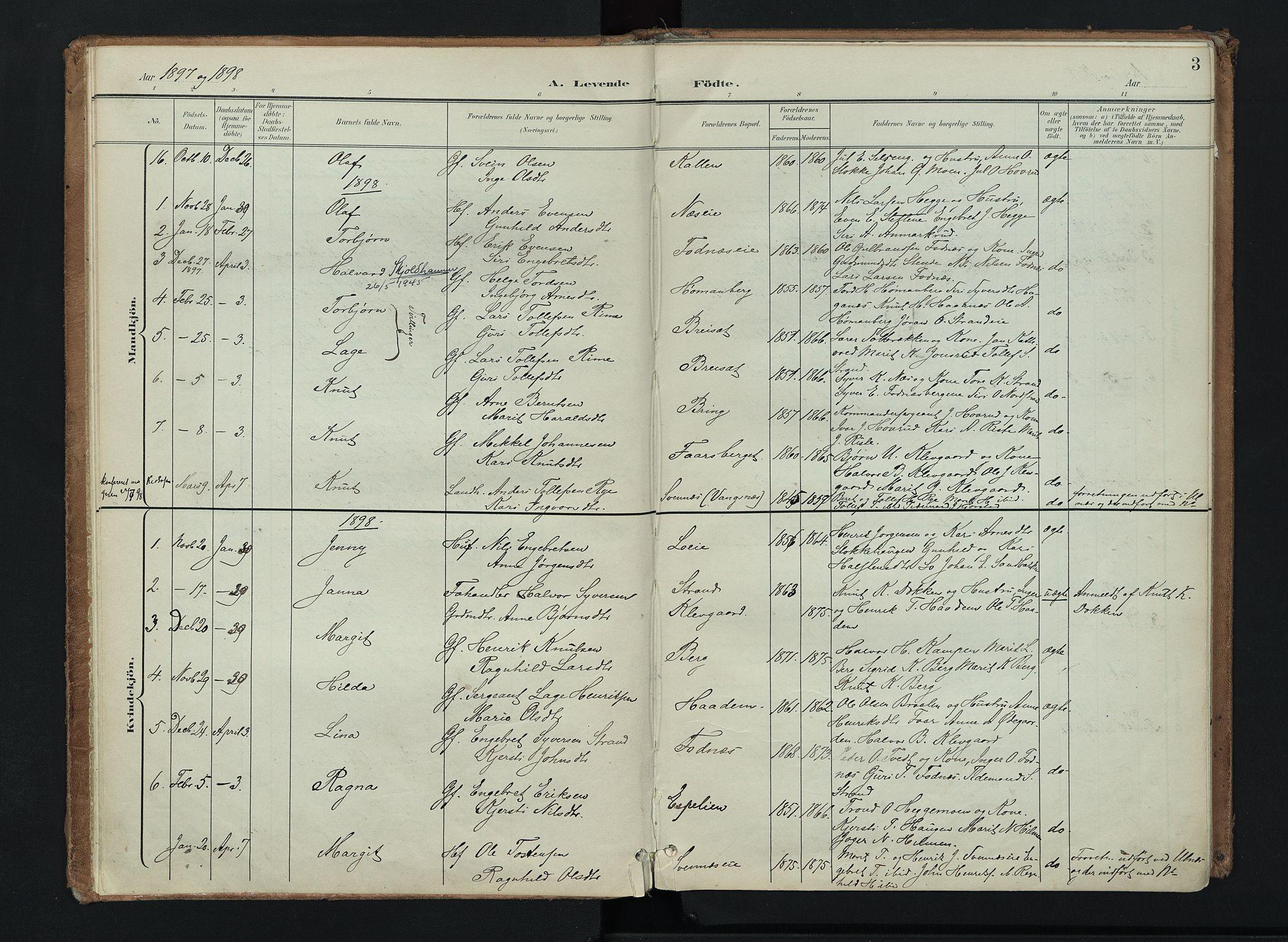 SAH, Nord-Aurdal prestekontor, Ministerialbok nr. 16, 1897-1925, s. 3