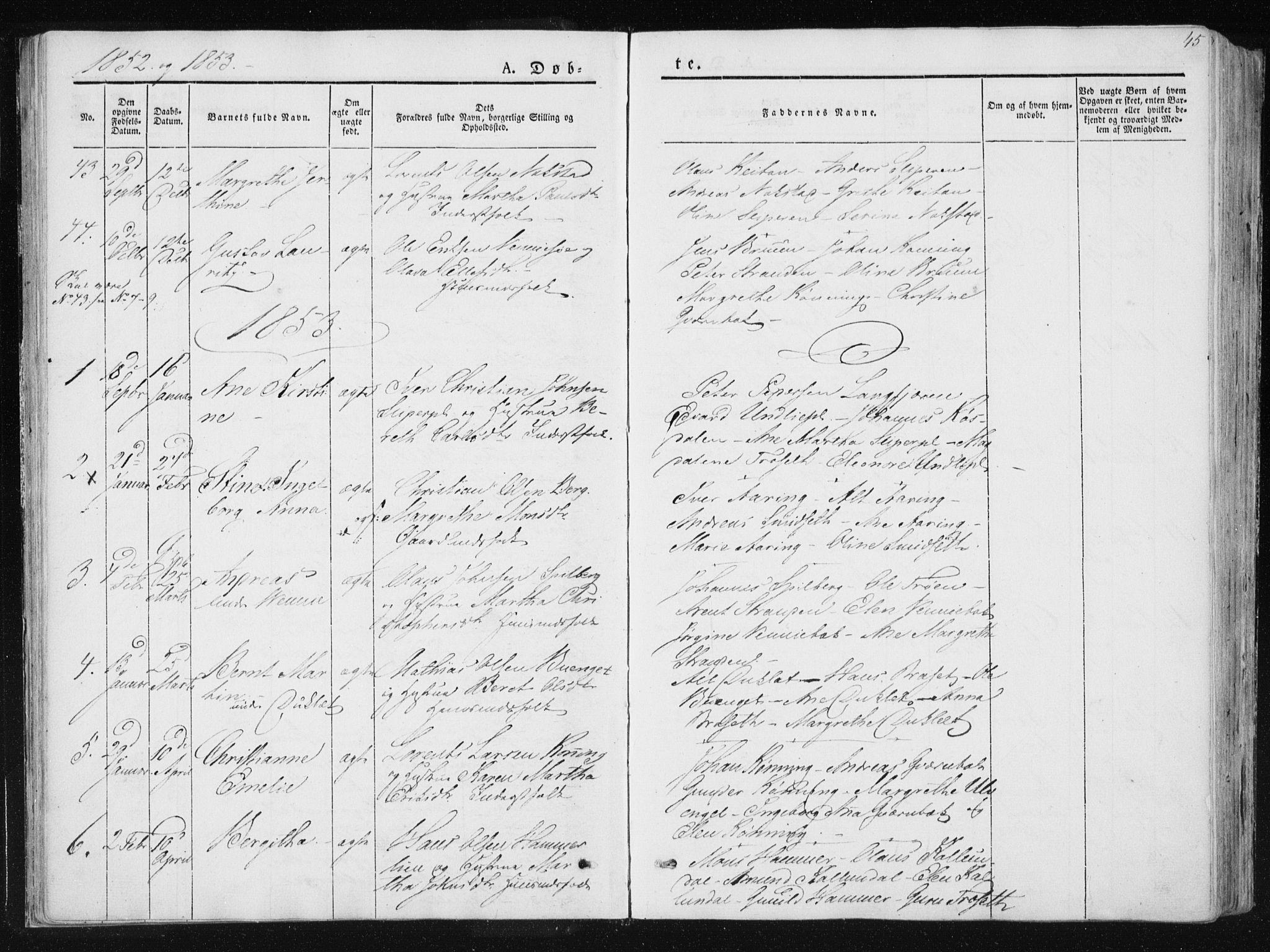SAT, Ministerialprotokoller, klokkerbøker og fødselsregistre - Nord-Trøndelag, 733/L0323: Ministerialbok nr. 733A02, 1843-1870, s. 45