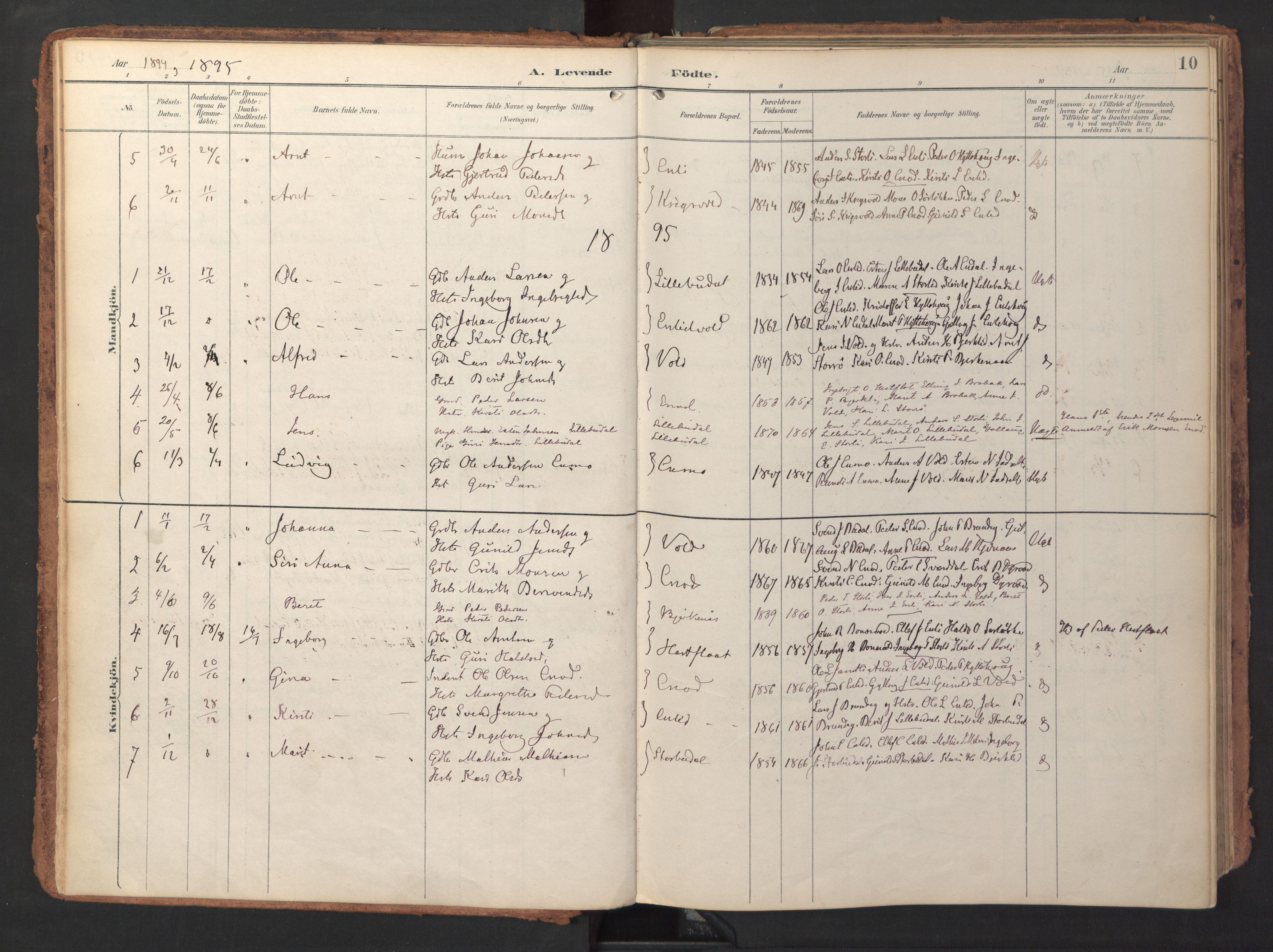 SAT, Ministerialprotokoller, klokkerbøker og fødselsregistre - Sør-Trøndelag, 690/L1050: Ministerialbok nr. 690A01, 1889-1929, s. 10