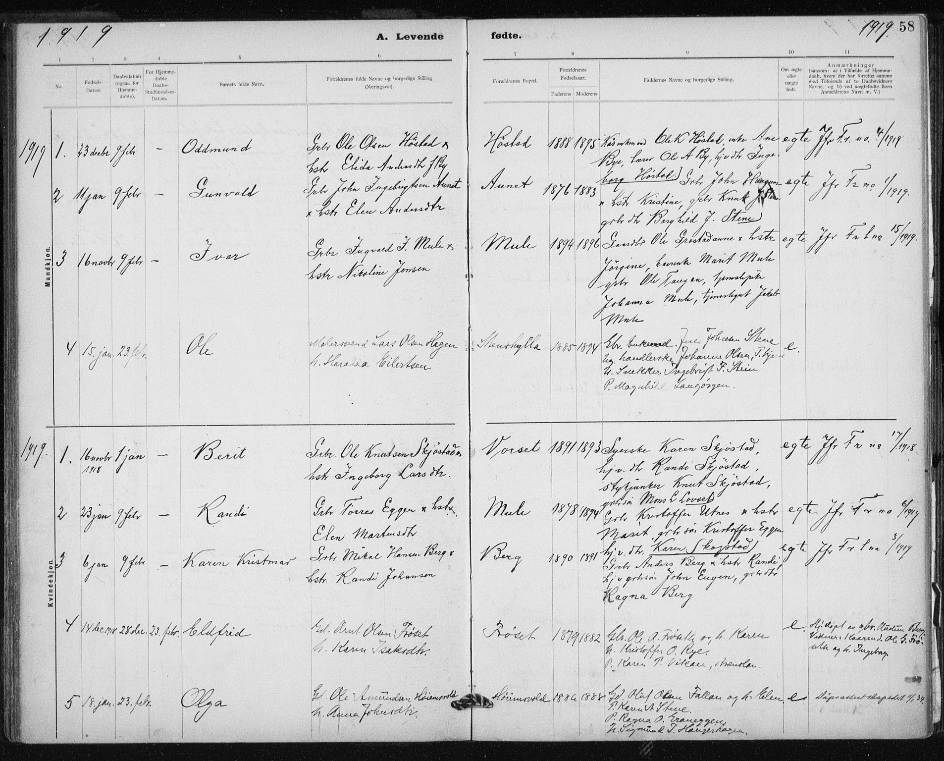 SAT, Ministerialprotokoller, klokkerbøker og fødselsregistre - Sør-Trøndelag, 612/L0381: Ministerialbok nr. 612A13, 1907-1923, s. 58