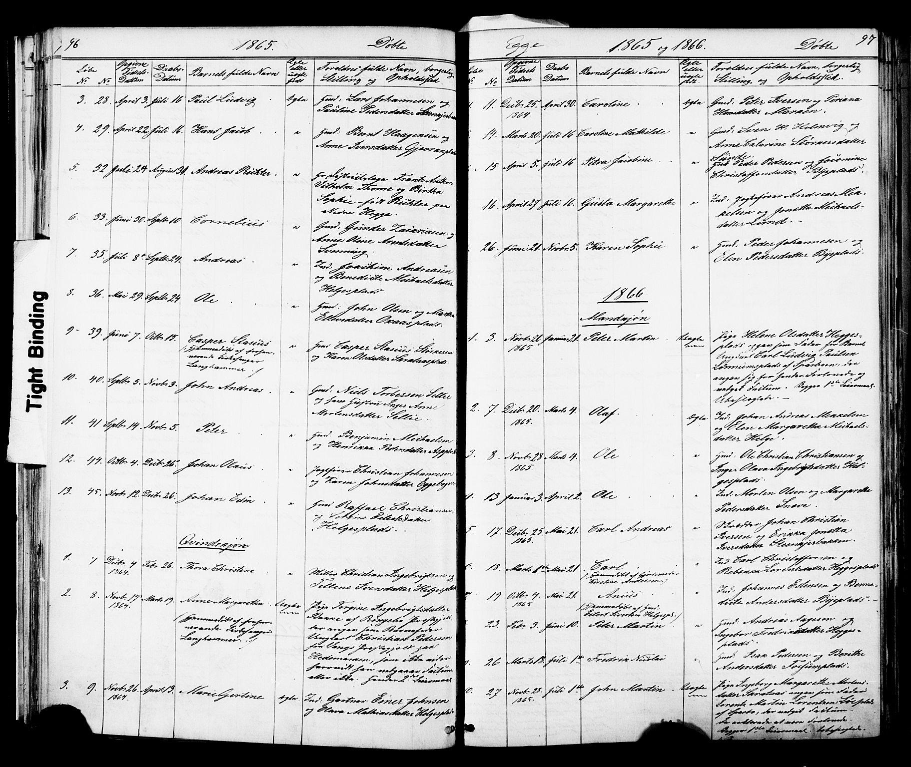 SAT, Ministerialprotokoller, klokkerbøker og fødselsregistre - Nord-Trøndelag, 739/L0367: Ministerialbok nr. 739A01 /3, 1838-1868, s. 96-97