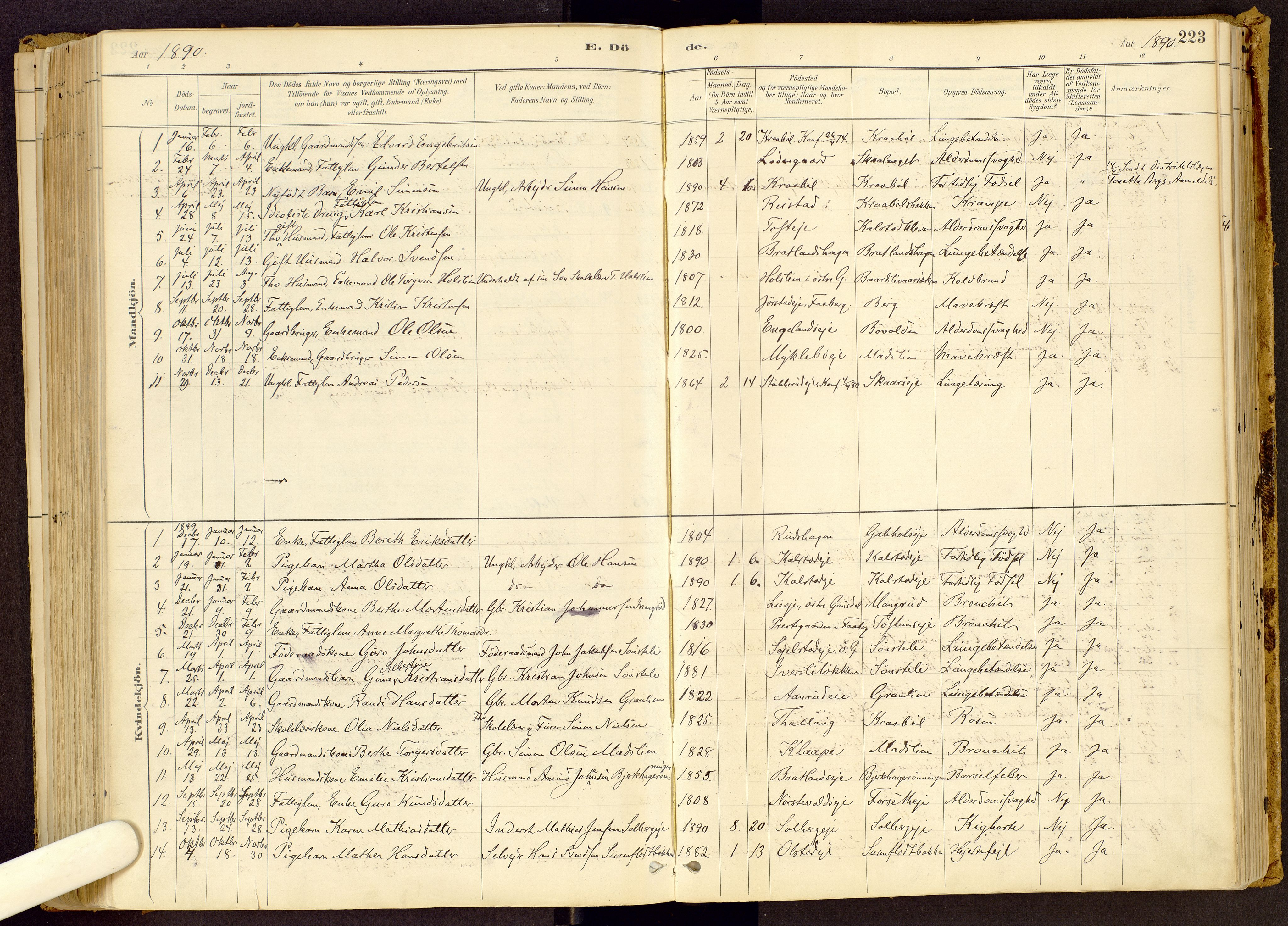 SAH, Vestre Gausdal prestekontor, Ministerialbok nr. 1, 1887-1914, s. 223