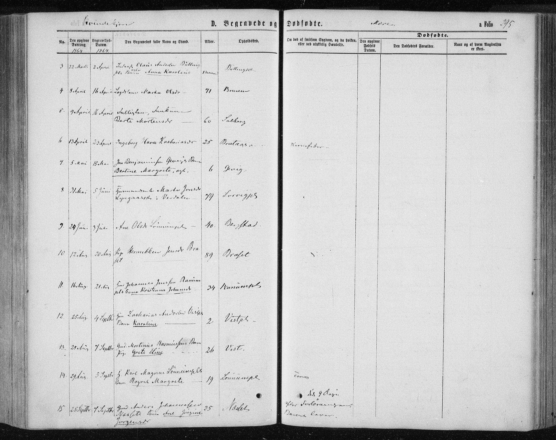 SAT, Ministerialprotokoller, klokkerbøker og fødselsregistre - Nord-Trøndelag, 735/L0345: Ministerialbok nr. 735A08 /1, 1863-1872, s. 295