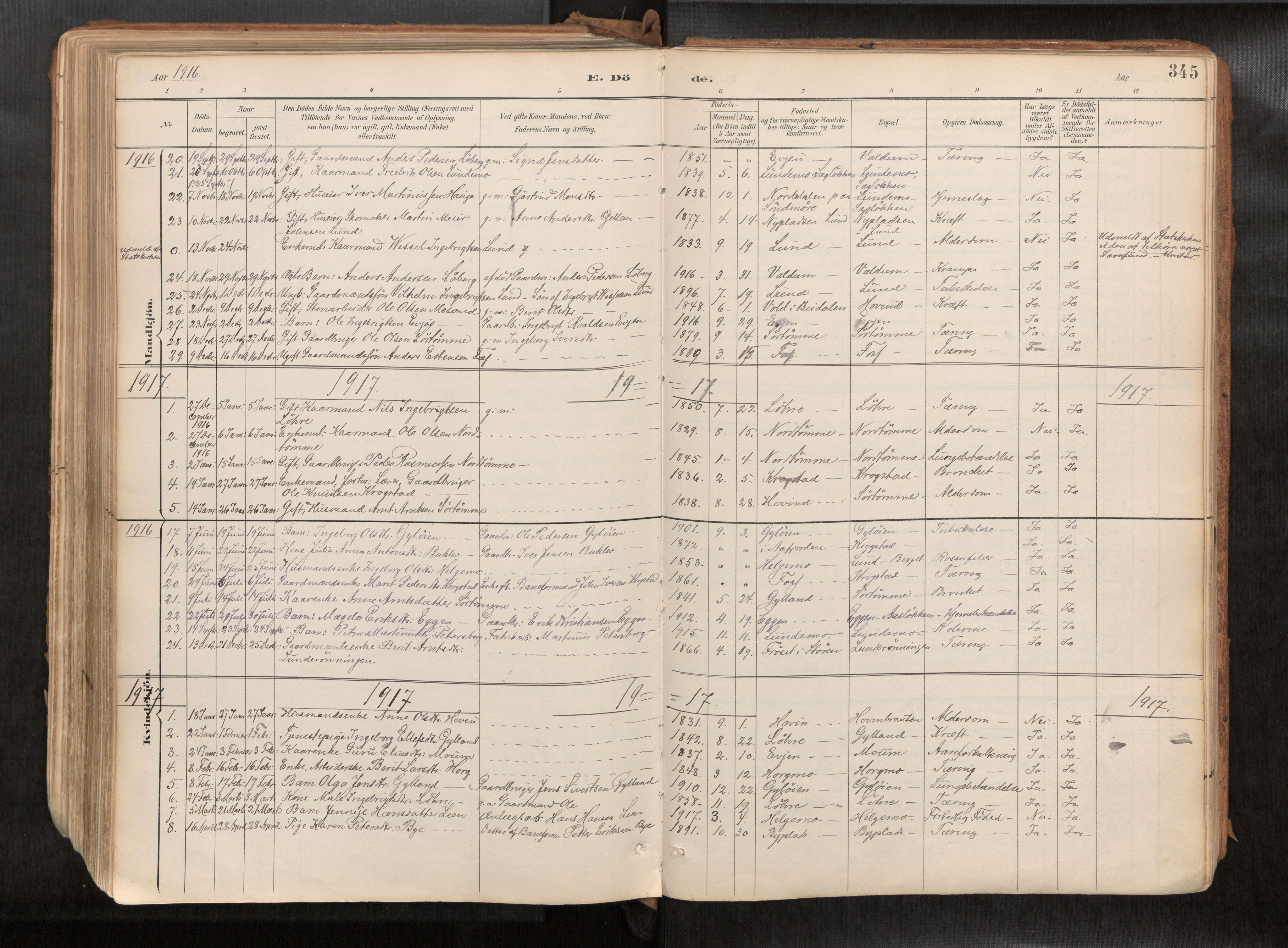 SAT, Ministerialprotokoller, klokkerbøker og fødselsregistre - Sør-Trøndelag, 692/L1105b: Ministerialbok nr. 692A06, 1891-1934, s. 345
