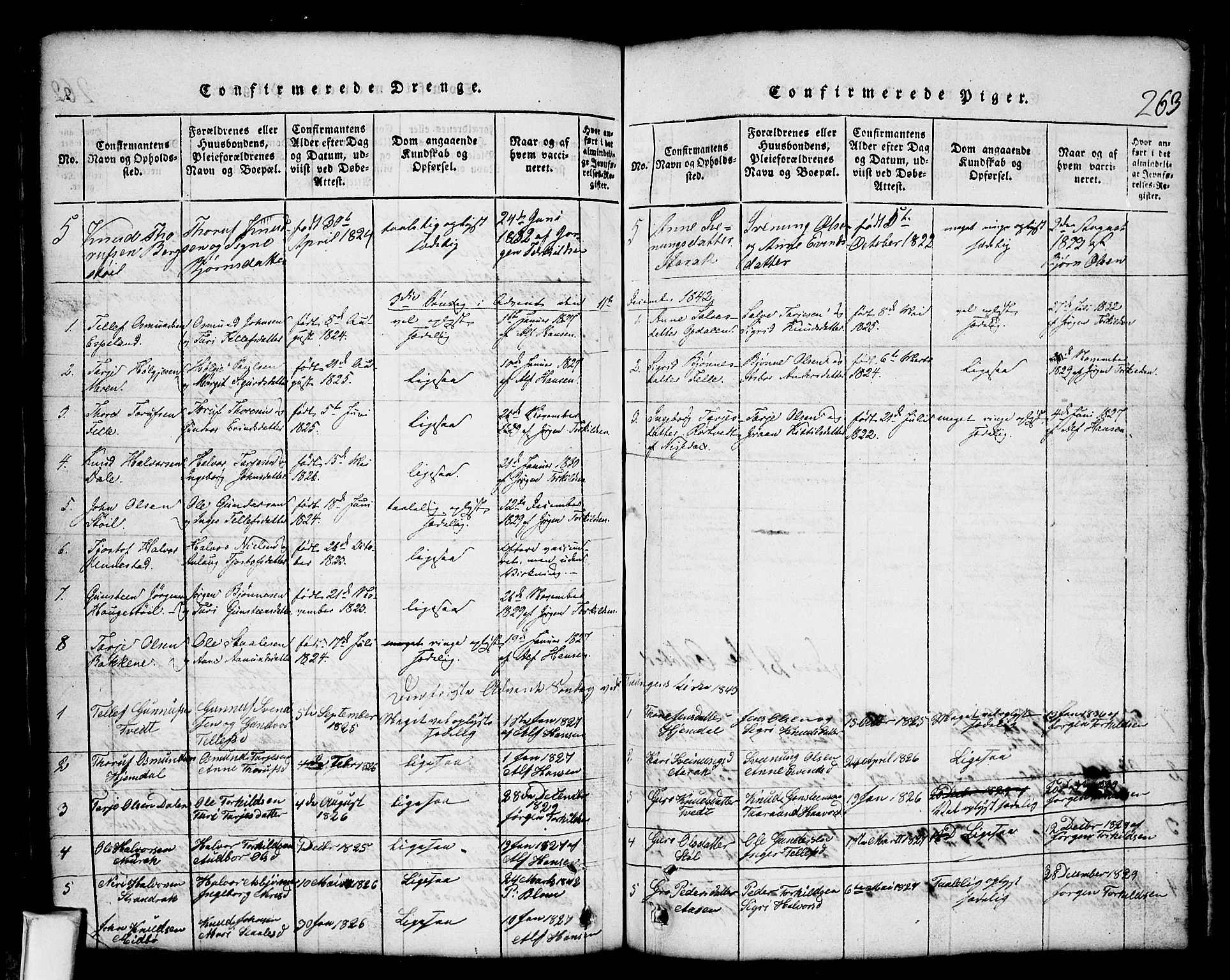 SAKO, Nissedal kirkebøker, G/Gb/L0001: Klokkerbok nr. II 1, 1814-1862, s. 263