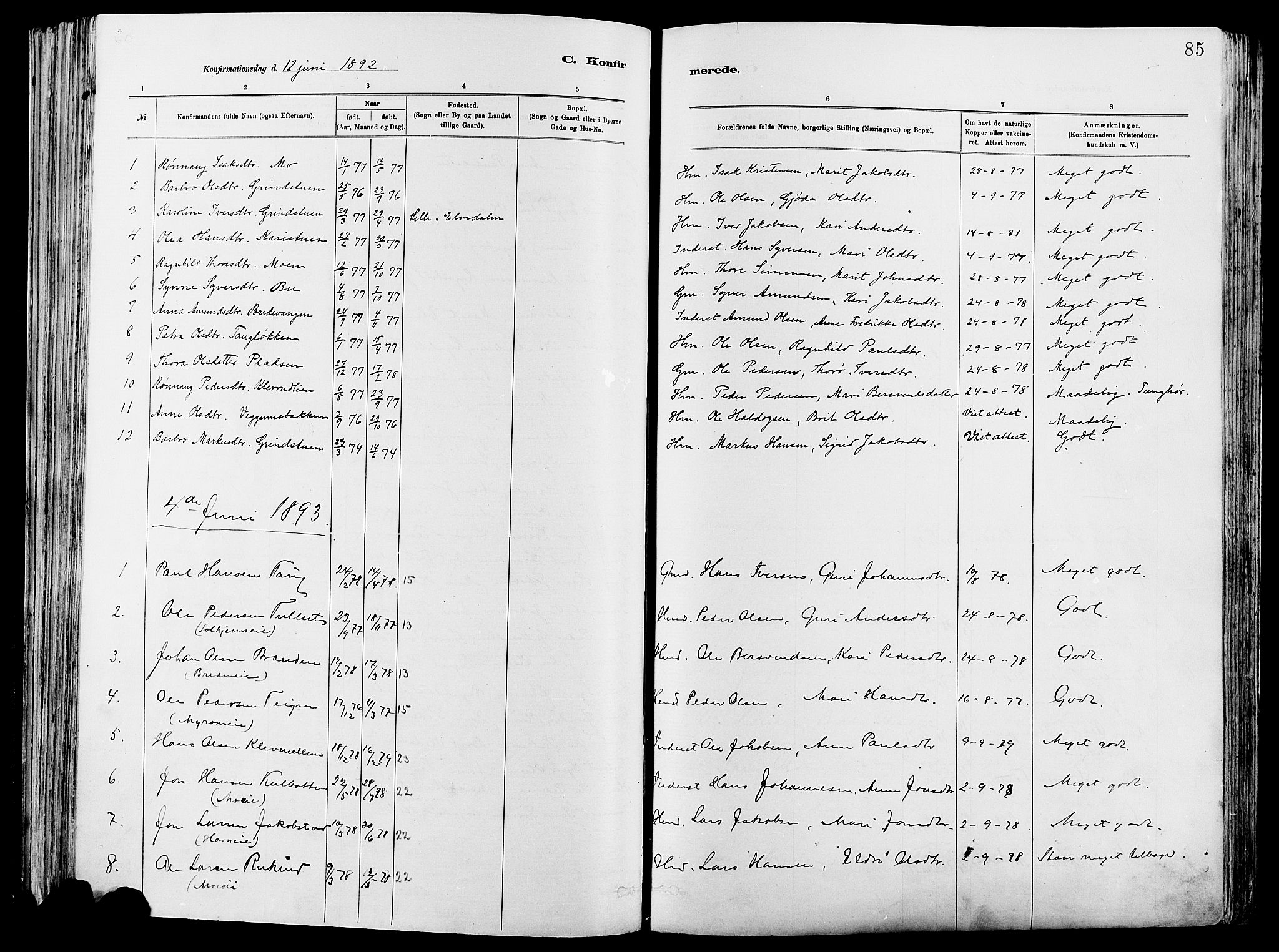 SAH, Vågå prestekontor, Ministerialbok nr. 8, 1886-1904, s. 85