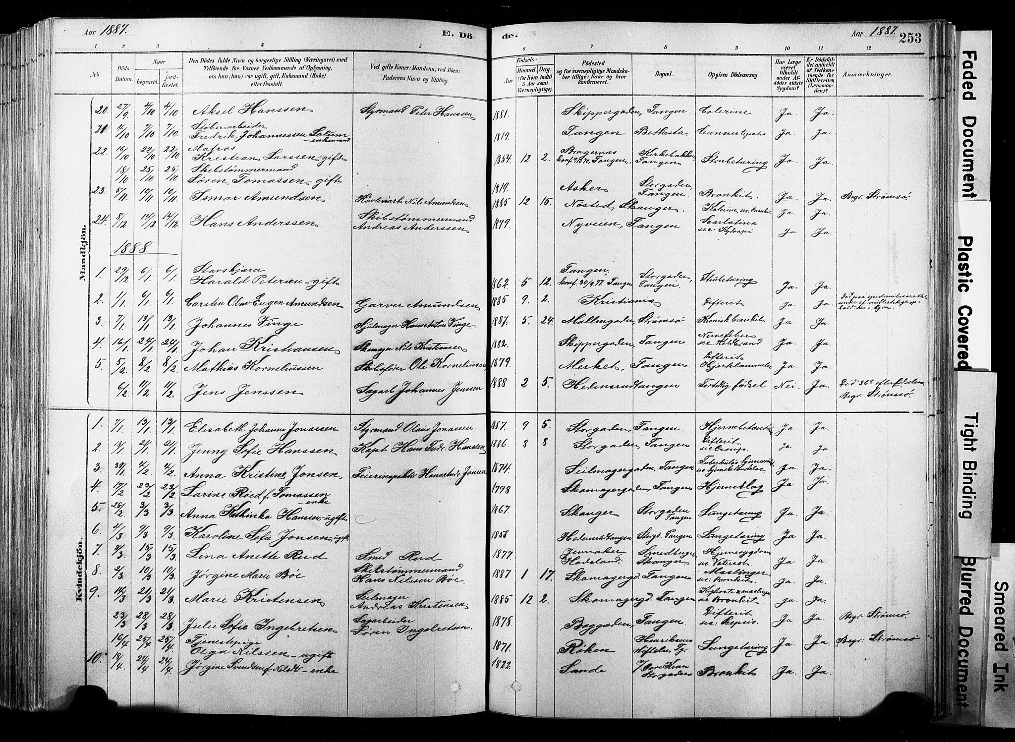 SAKO, Strømsø kirkebøker, F/Fb/L0006: Ministerialbok nr. II 6, 1879-1910, s. 253