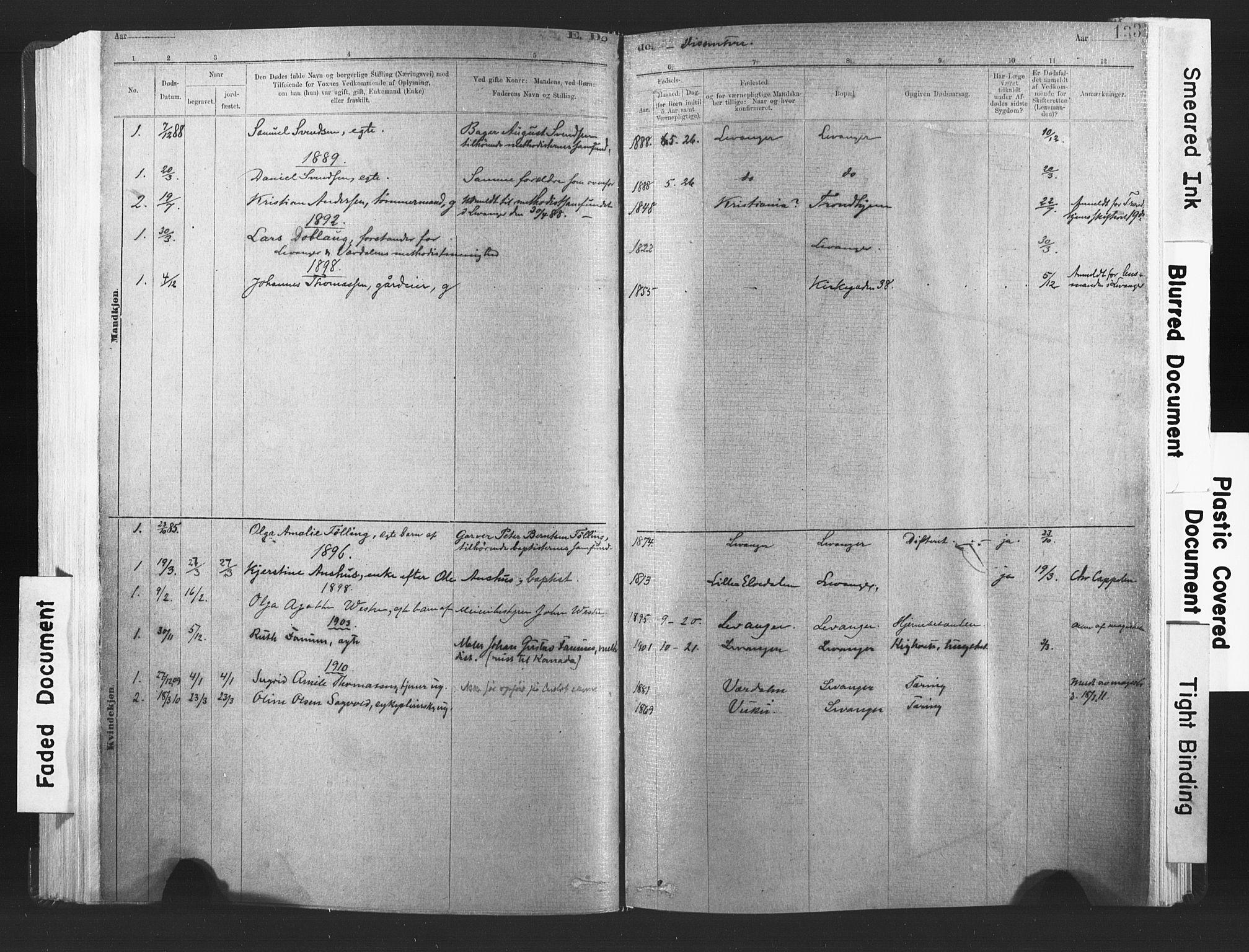 SAT, Ministerialprotokoller, klokkerbøker og fødselsregistre - Nord-Trøndelag, 720/L0189: Ministerialbok nr. 720A05, 1880-1911, s. 133