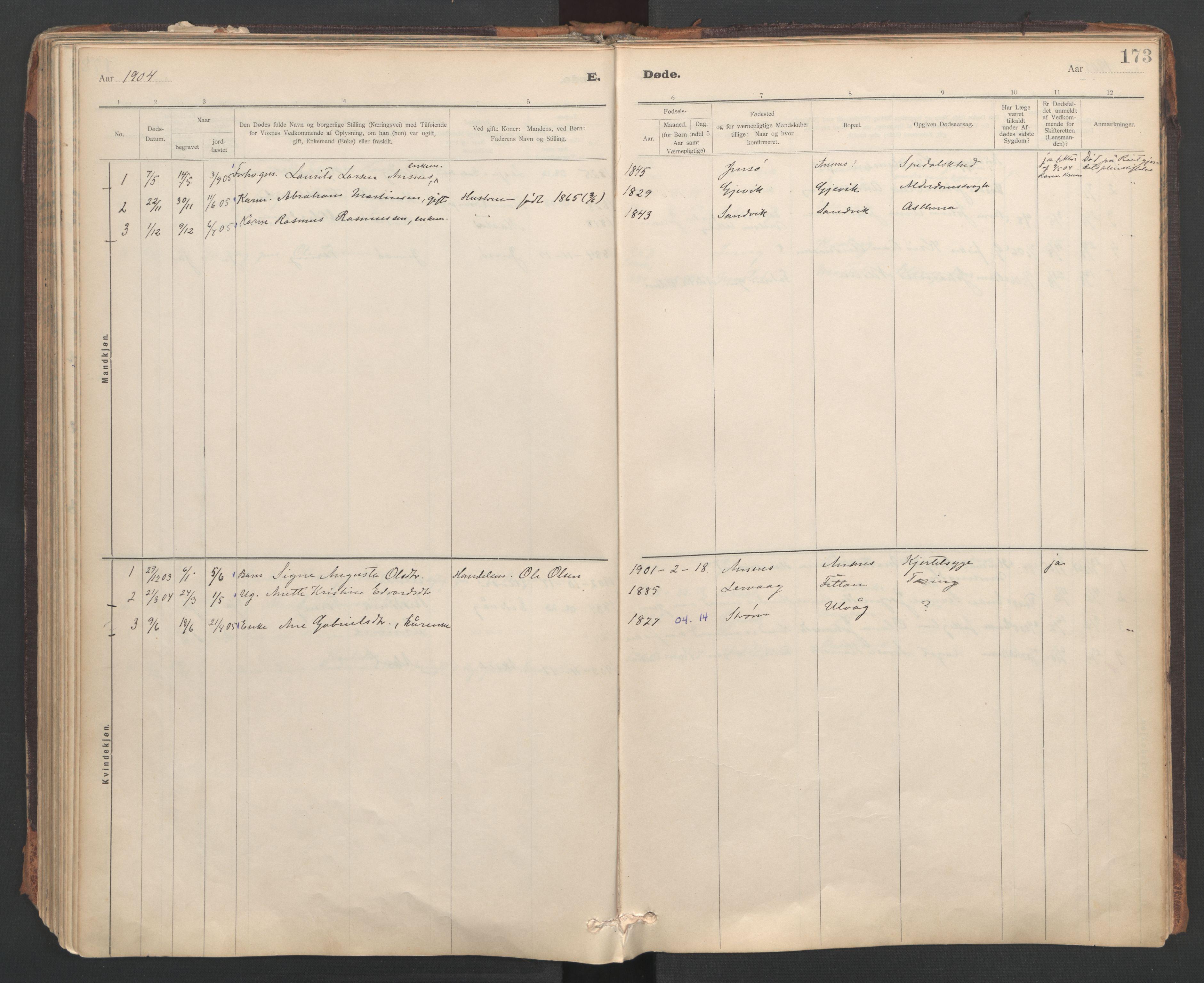 SAT, Ministerialprotokoller, klokkerbøker og fødselsregistre - Sør-Trøndelag, 637/L0559: Ministerialbok nr. 637A02, 1899-1923, s. 173