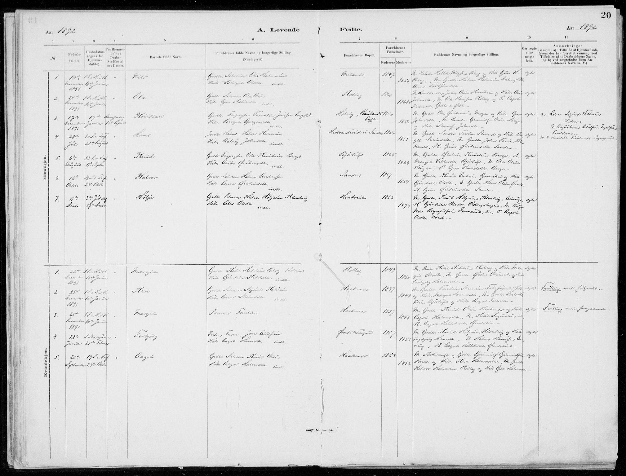 SAKO, Tinn kirkebøker, F/Fb/L0002: Ministerialbok nr. II 2, 1878-1917, s. 20
